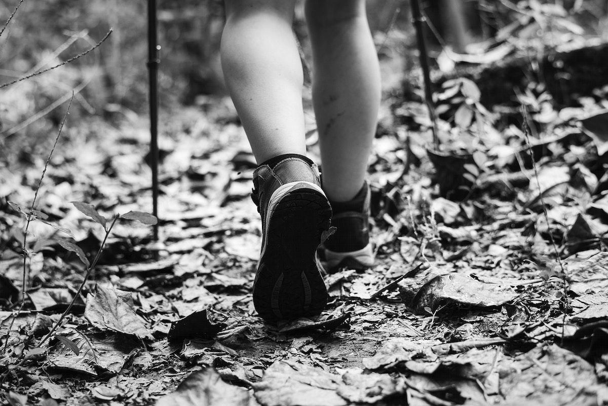 Man trekking in a forest