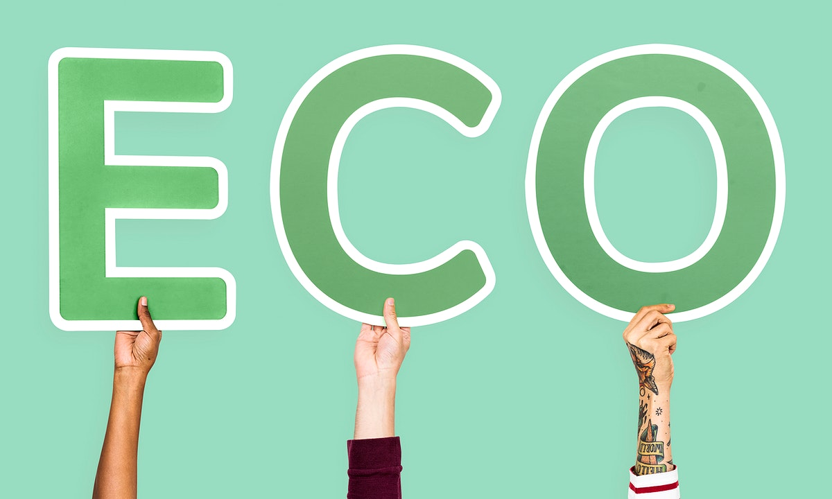 Diverse hands holding the word eco
