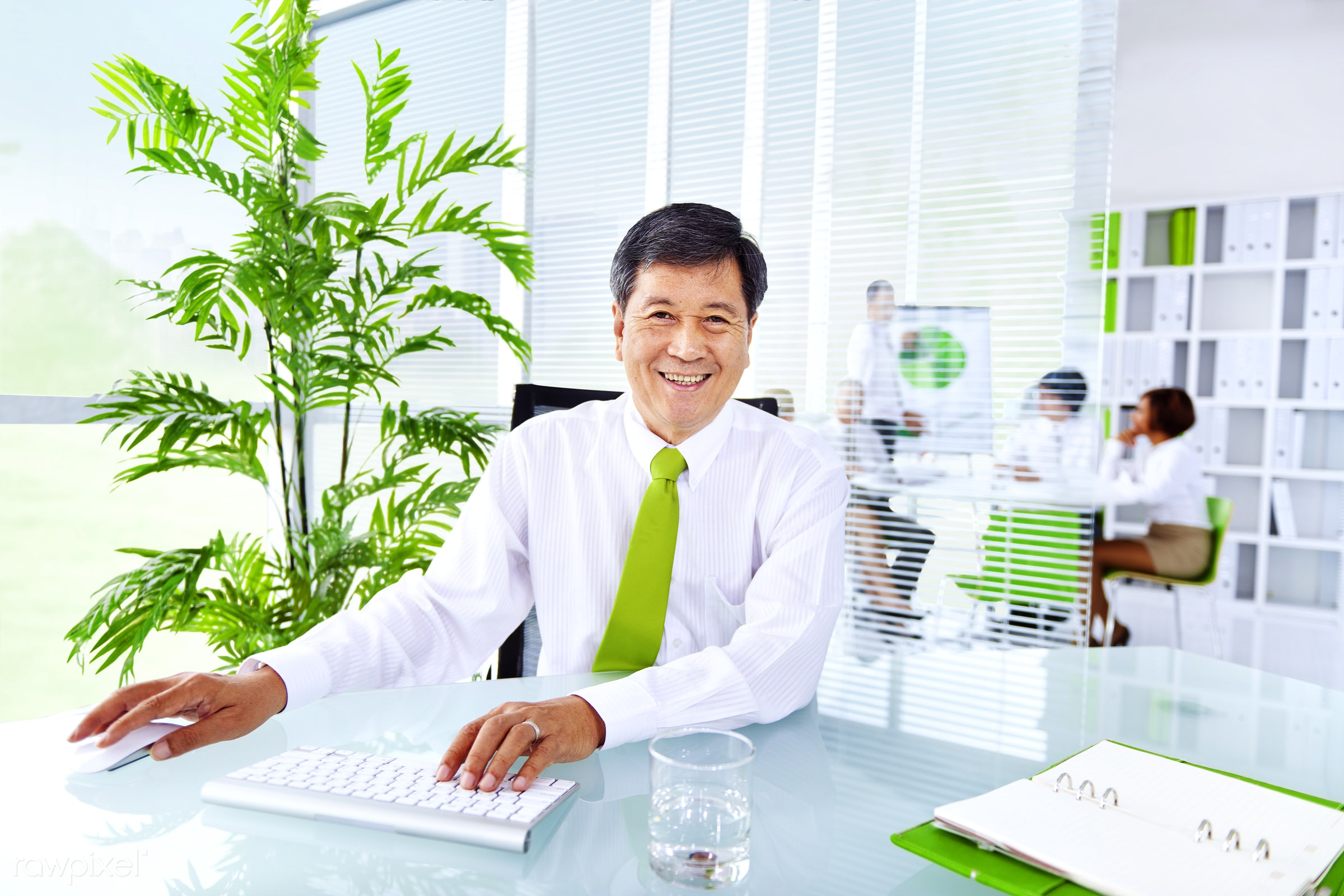 Senior businessman in a green office - adult, brainstorming, business, business people, business person, businessman, ceo,...
