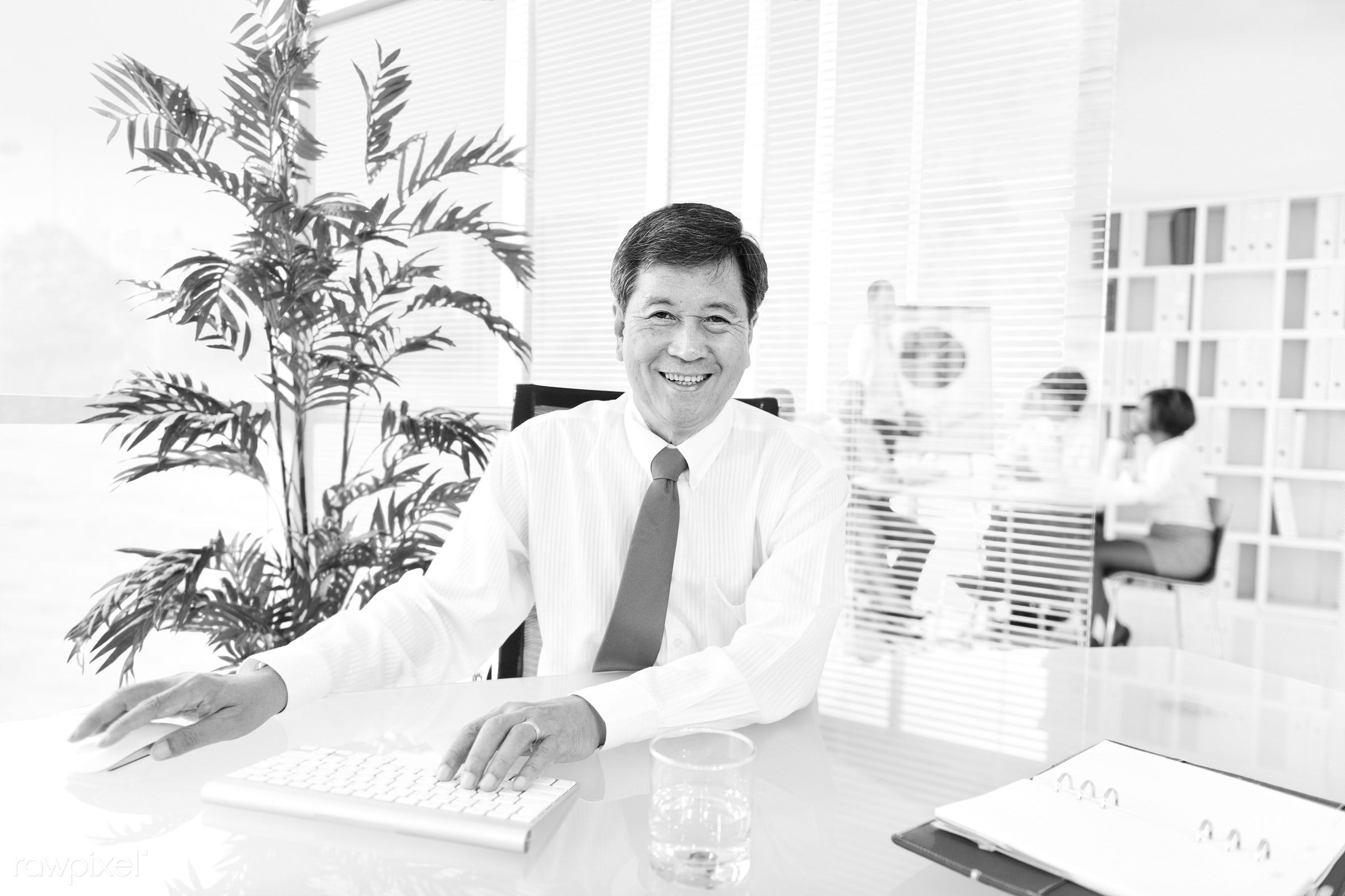 Senior businessman in a green office - adult, african descent, asian, asian ethnicity, assistant, brainstorming, business,...