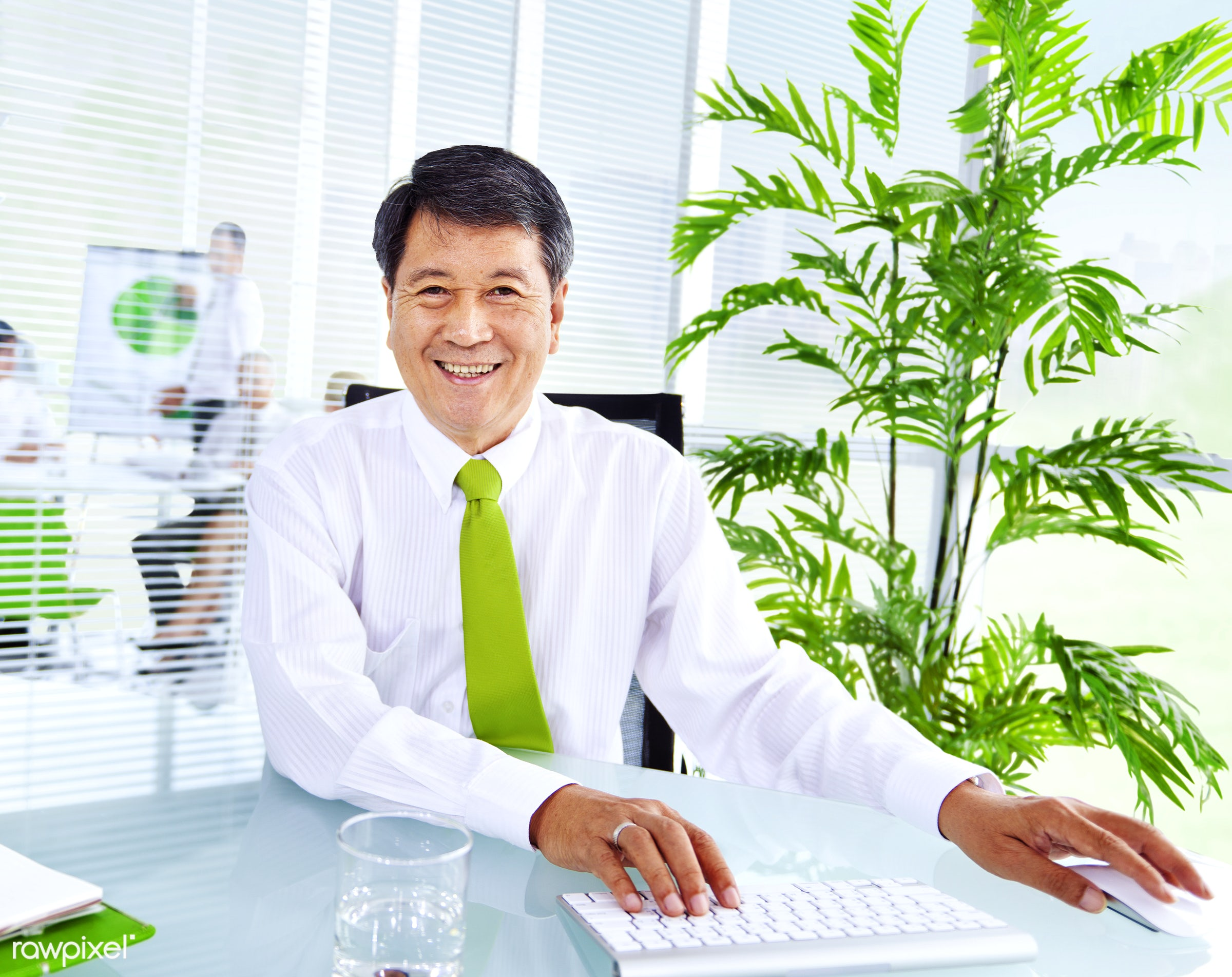 Senior businessman in a green office - adult, asian, assistant, brainstorming, business, business people, business person,...