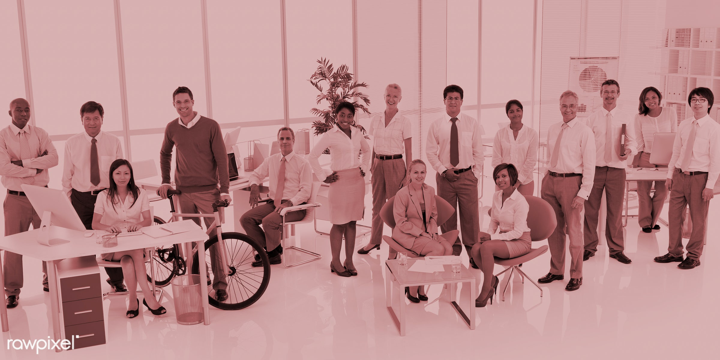 Business people working in a green office - african descent, asian ethnicity, bicycle, board room, business, business people...