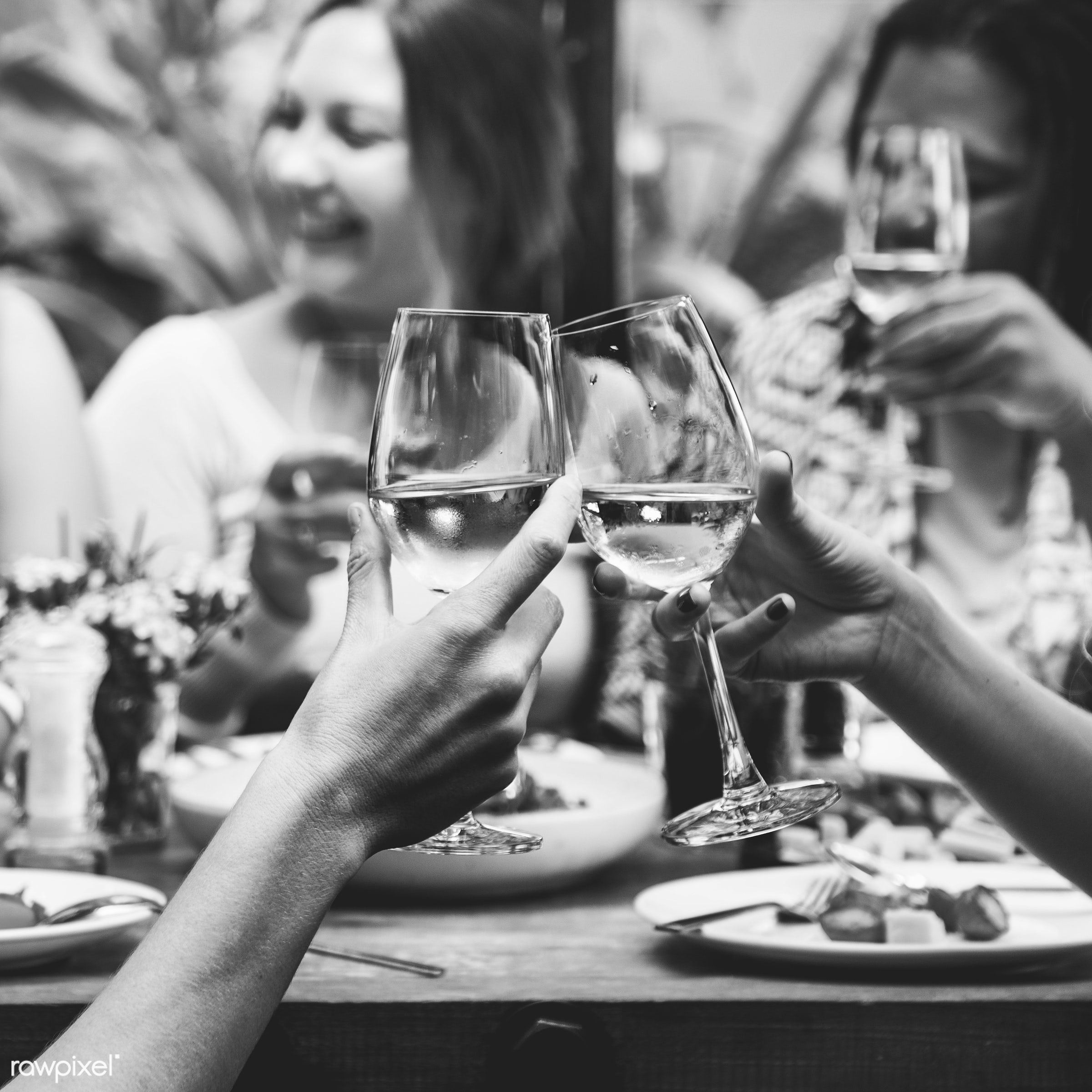 adults, african american ethnicity, alcohol, book, caucasian, celebration, champagne, cheerful, dine, dining, dinner,...