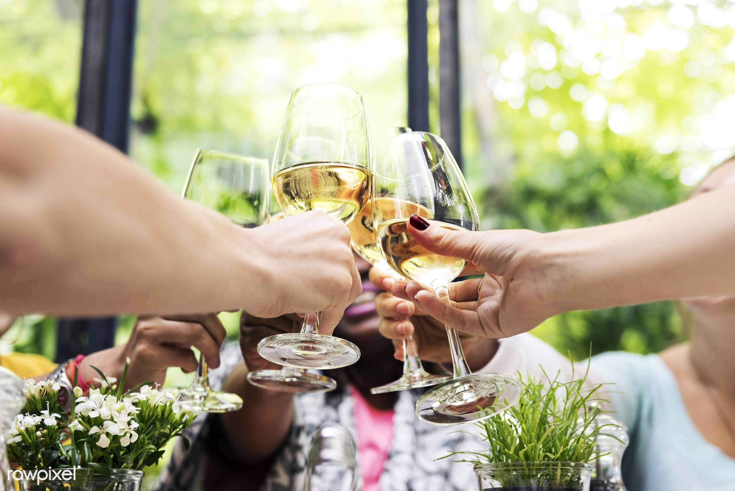 Women at a dinner party - brunch, toast, wine, african, alcohol, asian, caucasian, celebration, champagne, cheerful,...