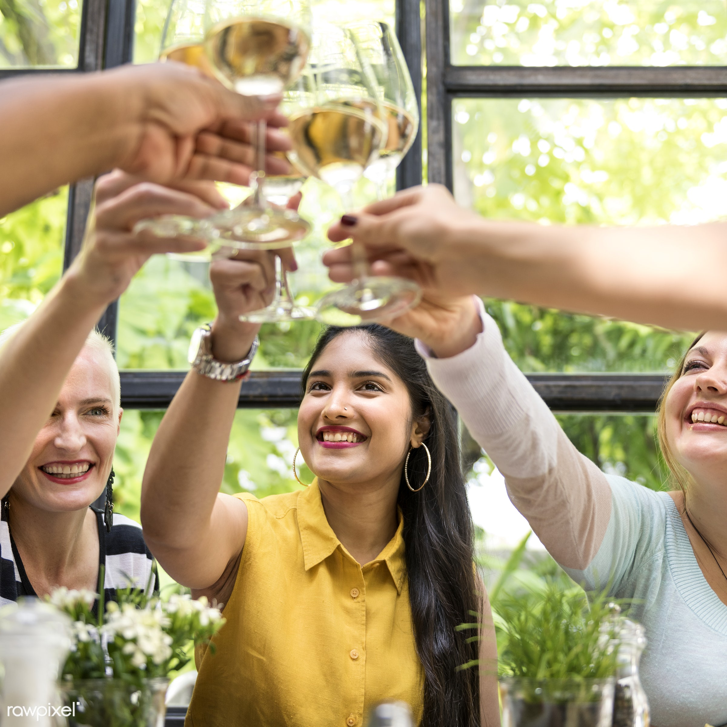 Women having wine together - asian, caucasian, celebration, champagne, cheerful, cheers, communication, connection, dinner,...