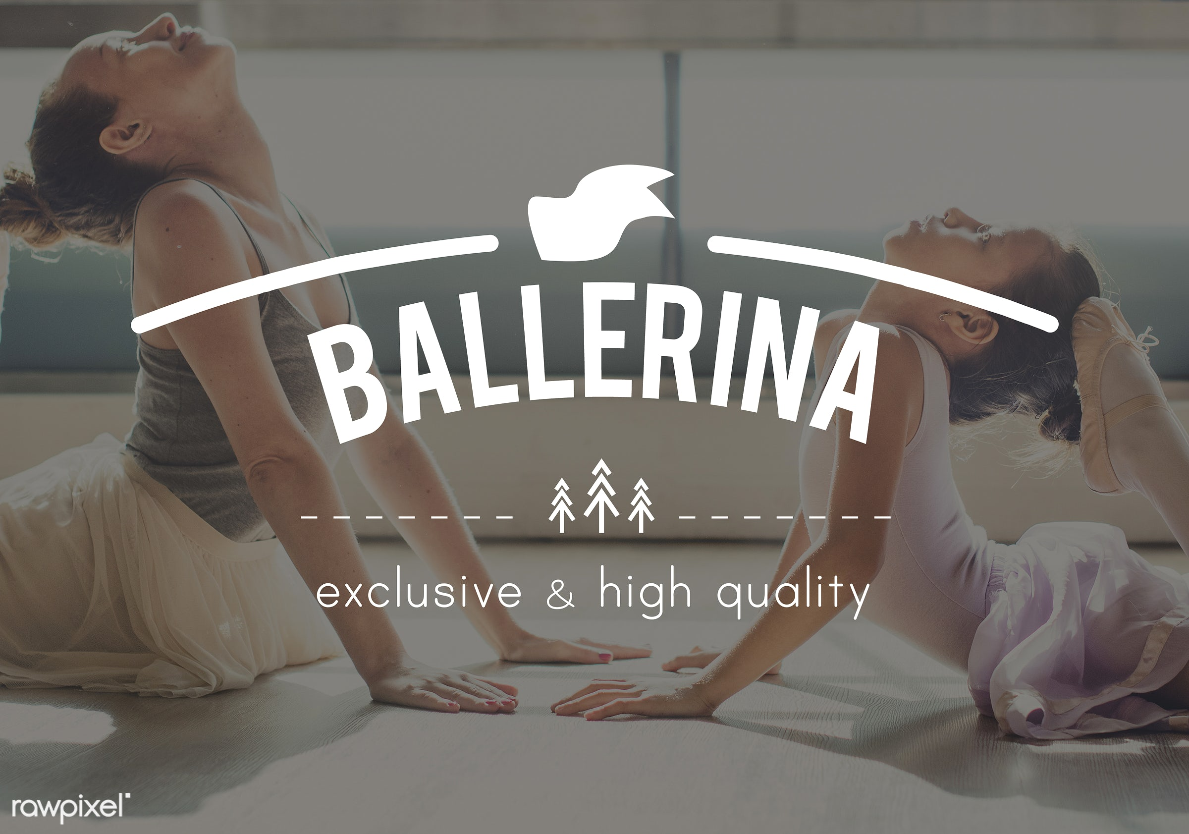active, activity, ballerina, ballet, bonding, caucasian, child, children, class, communication, connection, costume, dance,...