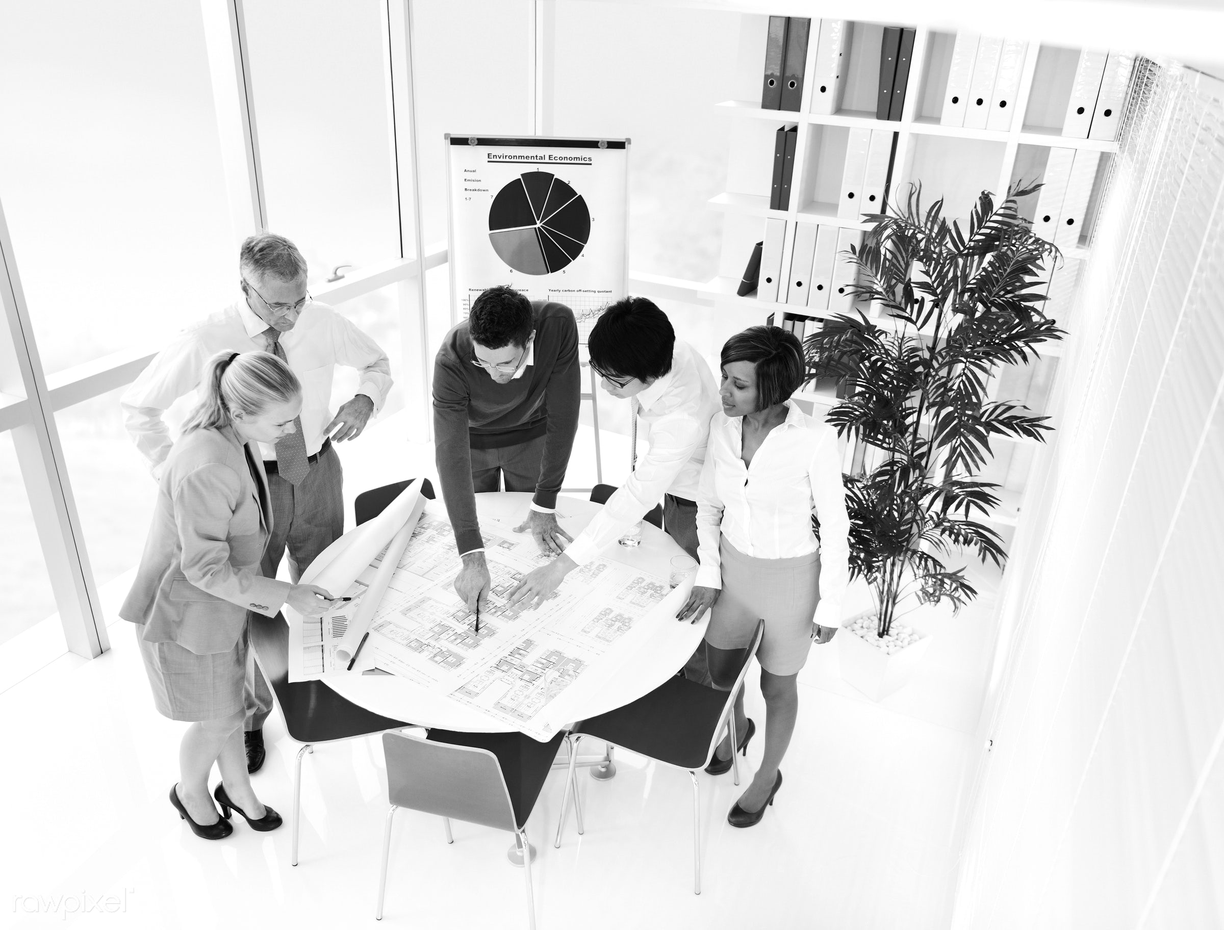 Business people working in an office - office, green office, adult, african descent, asian ethnicity, brainstorming,...