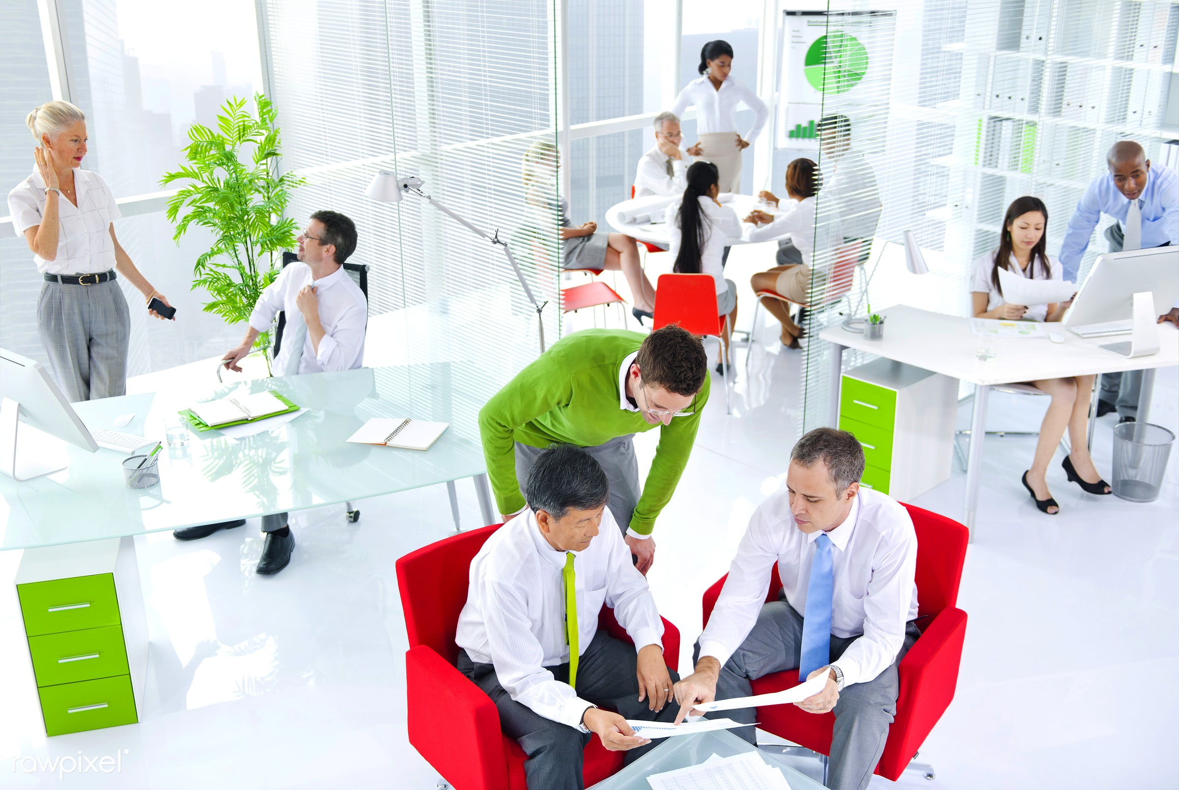 Business people working in a green office - adult, african descent, asian ethnicity, brainstorming, business, business...