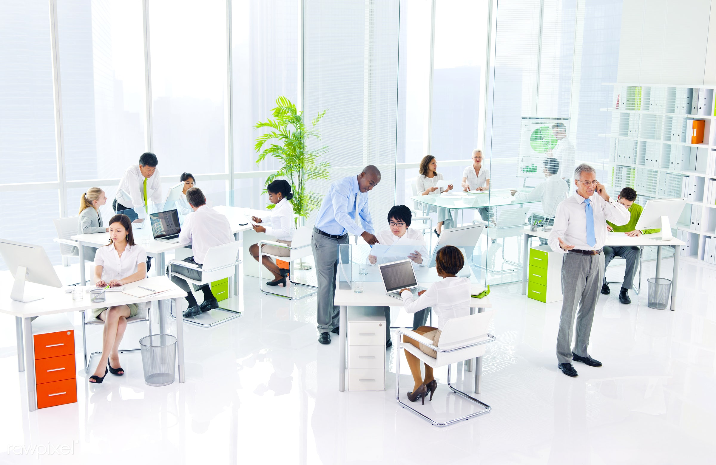Business people working in a green office - green office, adult, african descent, asian ethnicity, assistant, brainstorming...