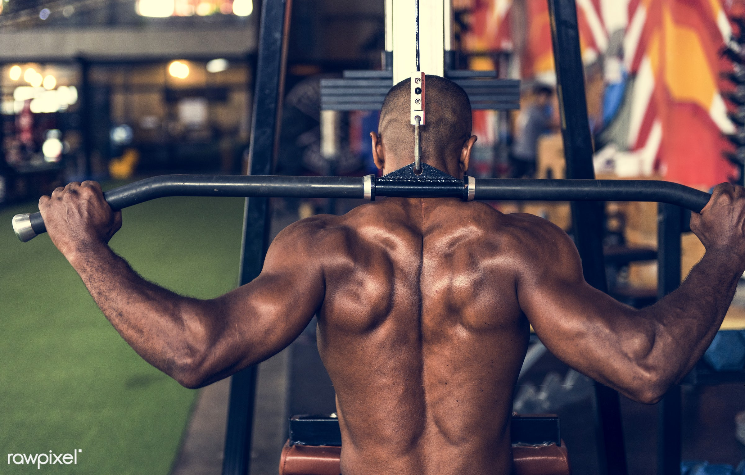 At the gym - active, activity, african descent, athlete, athletic, attractive, back, body, buff, concentration, equipment,...