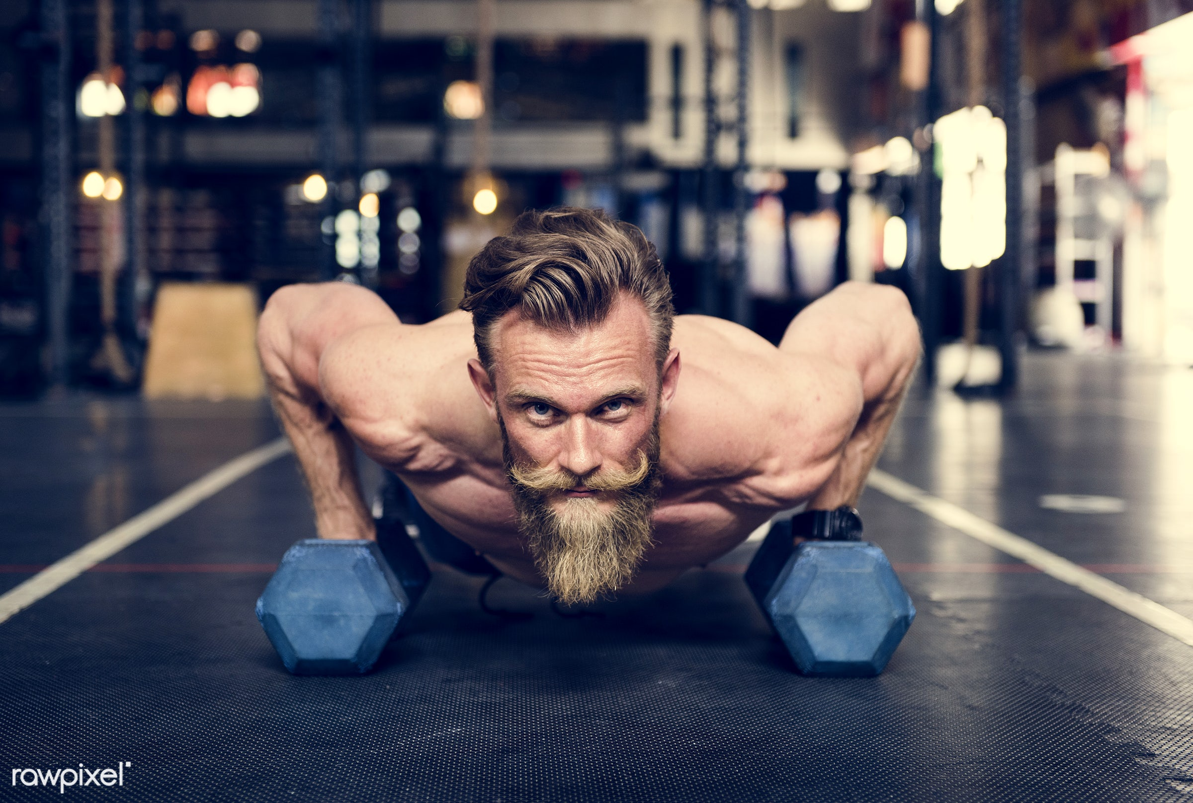 At the gym - active, activity, athlete, athletic, bearded, body, buff, caucasian, dumbbells, equipment, exercise, fit,...