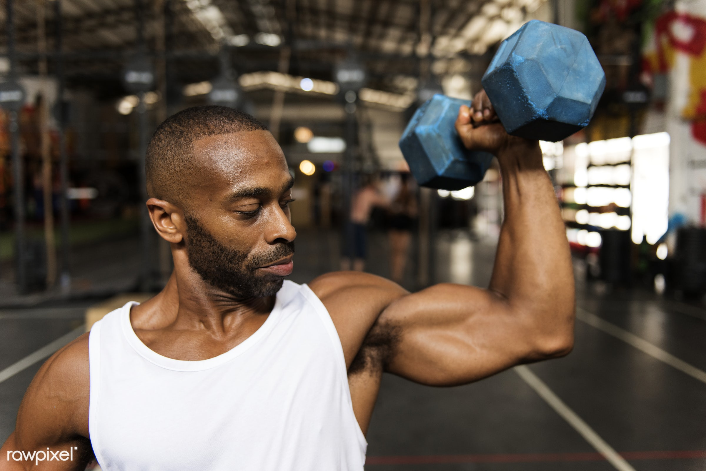 Muscle man at the gym - achievement, active, activity, african descent, athlete, athletic, attractive, body, buff, dumbbells...