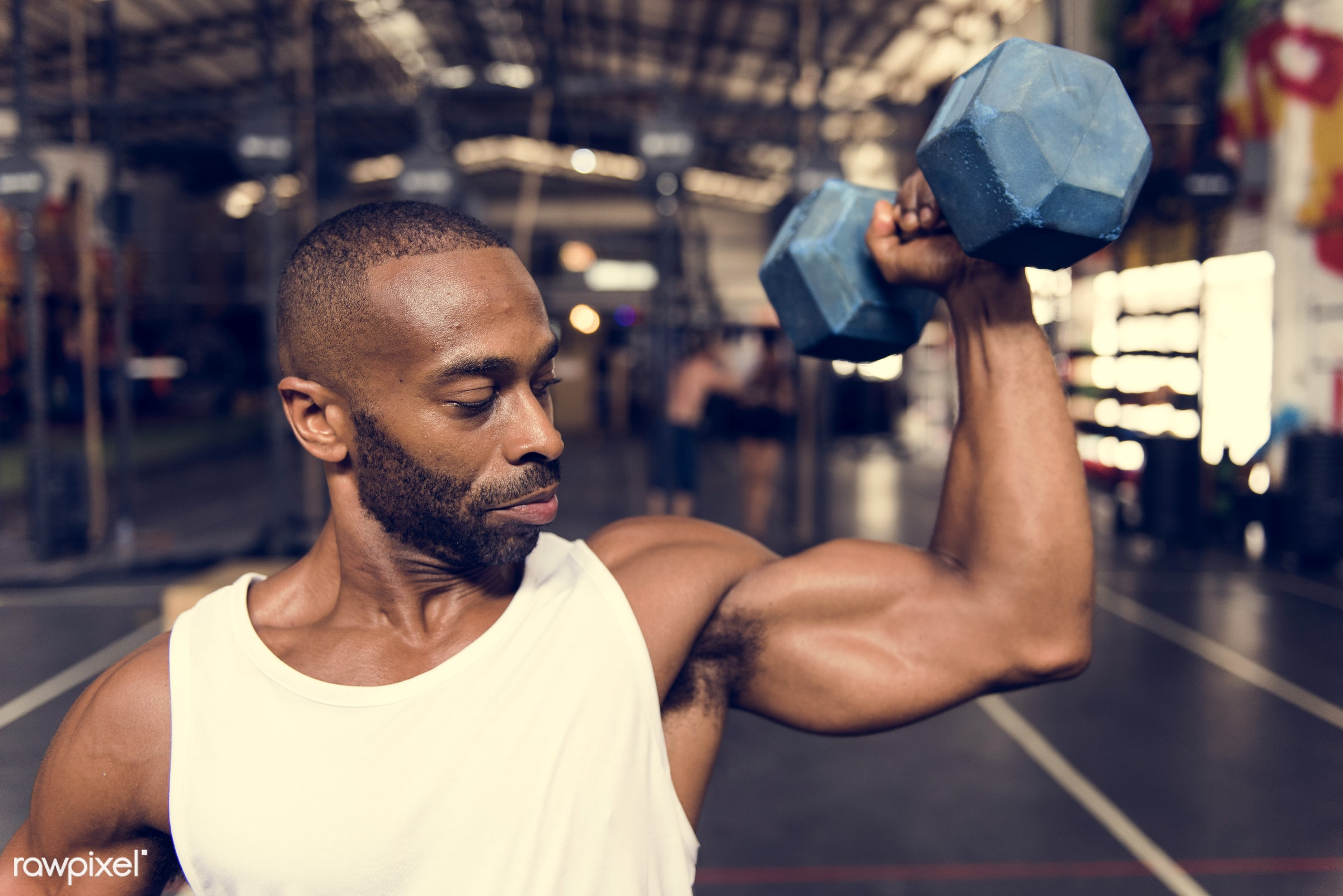 At the gym - achievement, active, activity, african descent, athlete, athletic, attractive, body, buff, dumbbells, fit,...