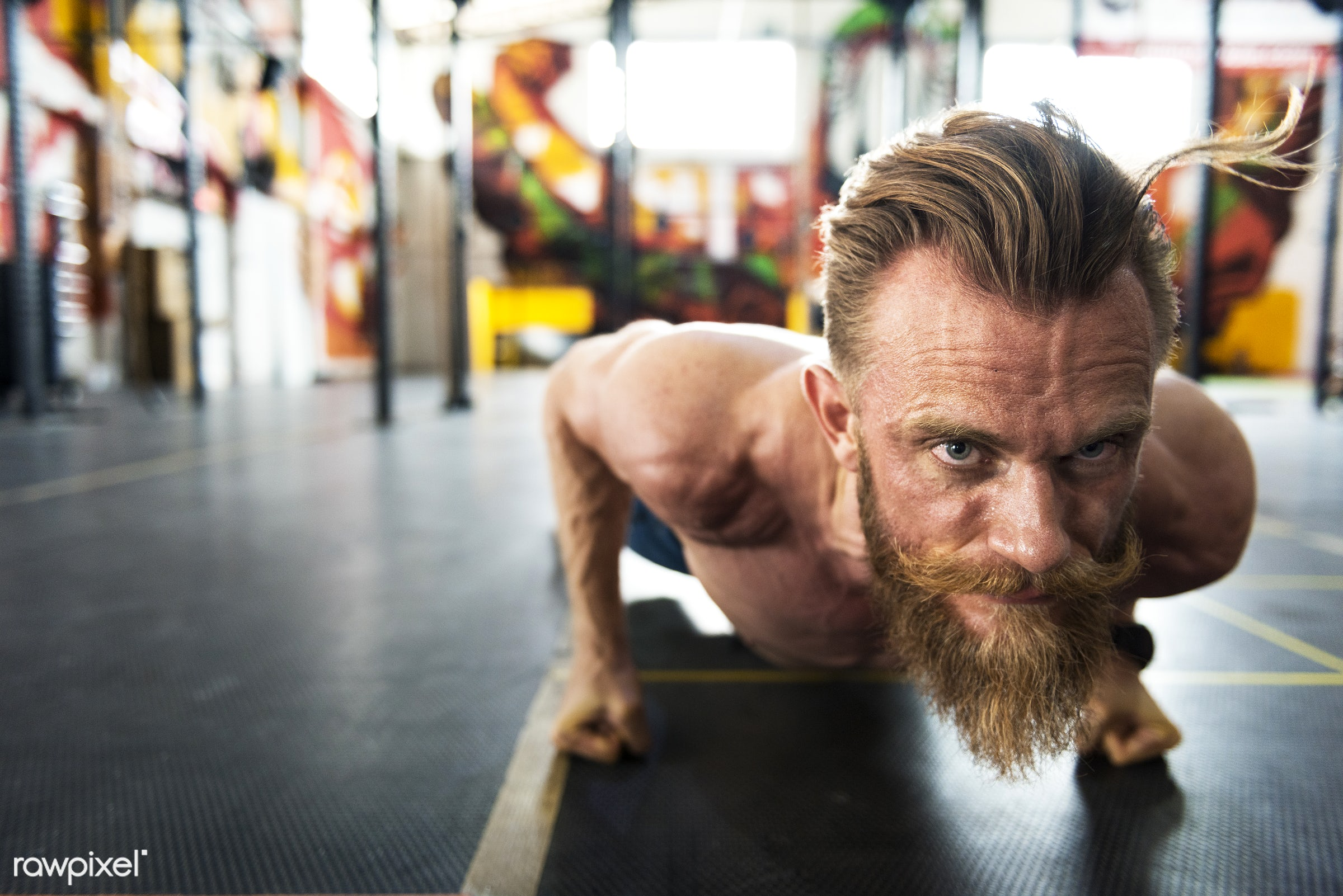 active, activity, athlete, athletic, bearded, body, buff, caucasian, equipment, exercise, fit, fitness, gym, handsome,...