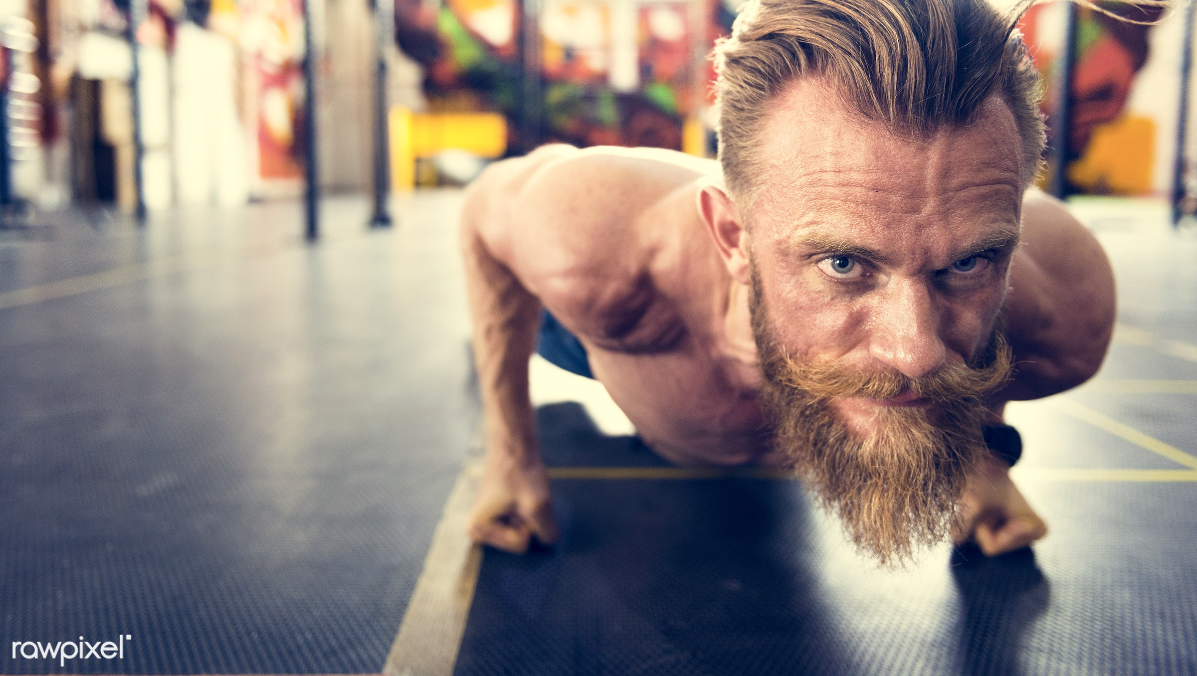 At the gym - active, activity, athlete, athletic, bearded, body, buff, caucasian, equipment, exercise, fit, fitness, gym,...