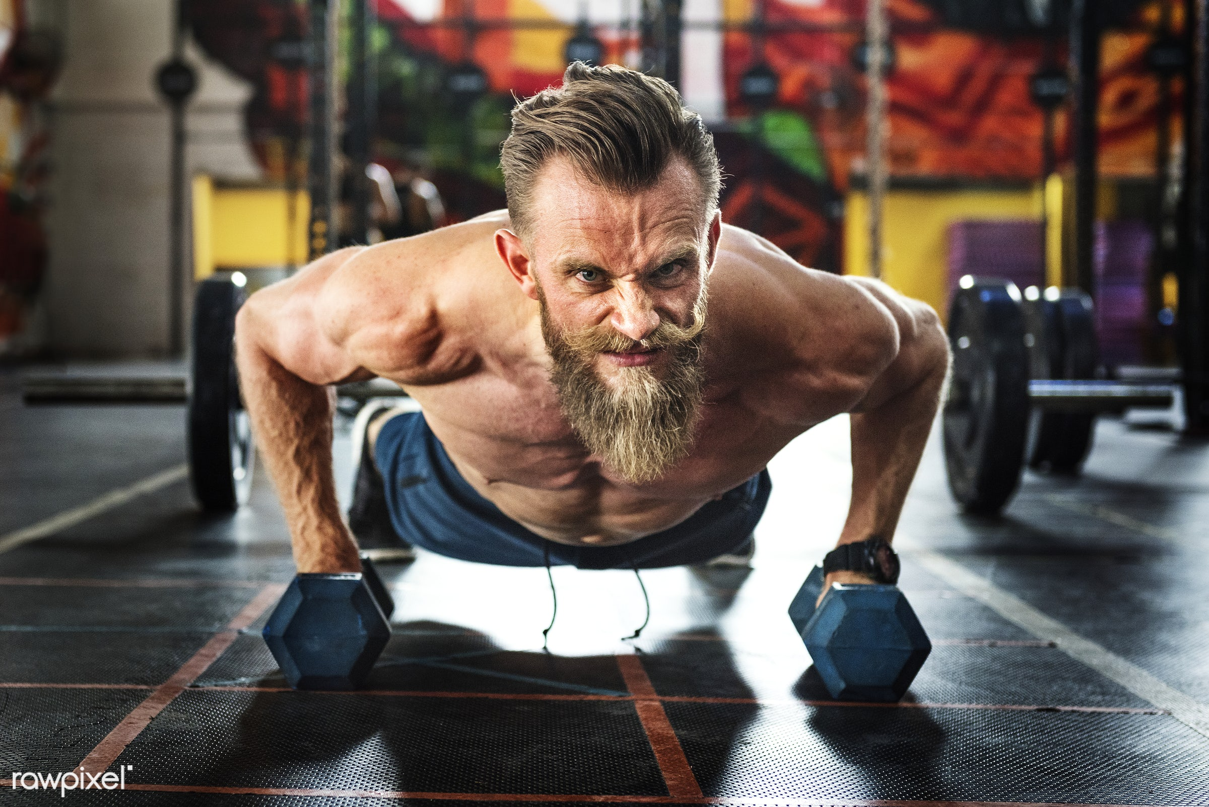 Bearded man at the gym - active, activity, athlete, athletic, beard, bearded, body, buff, crossfit, dumbbells, equipment,...