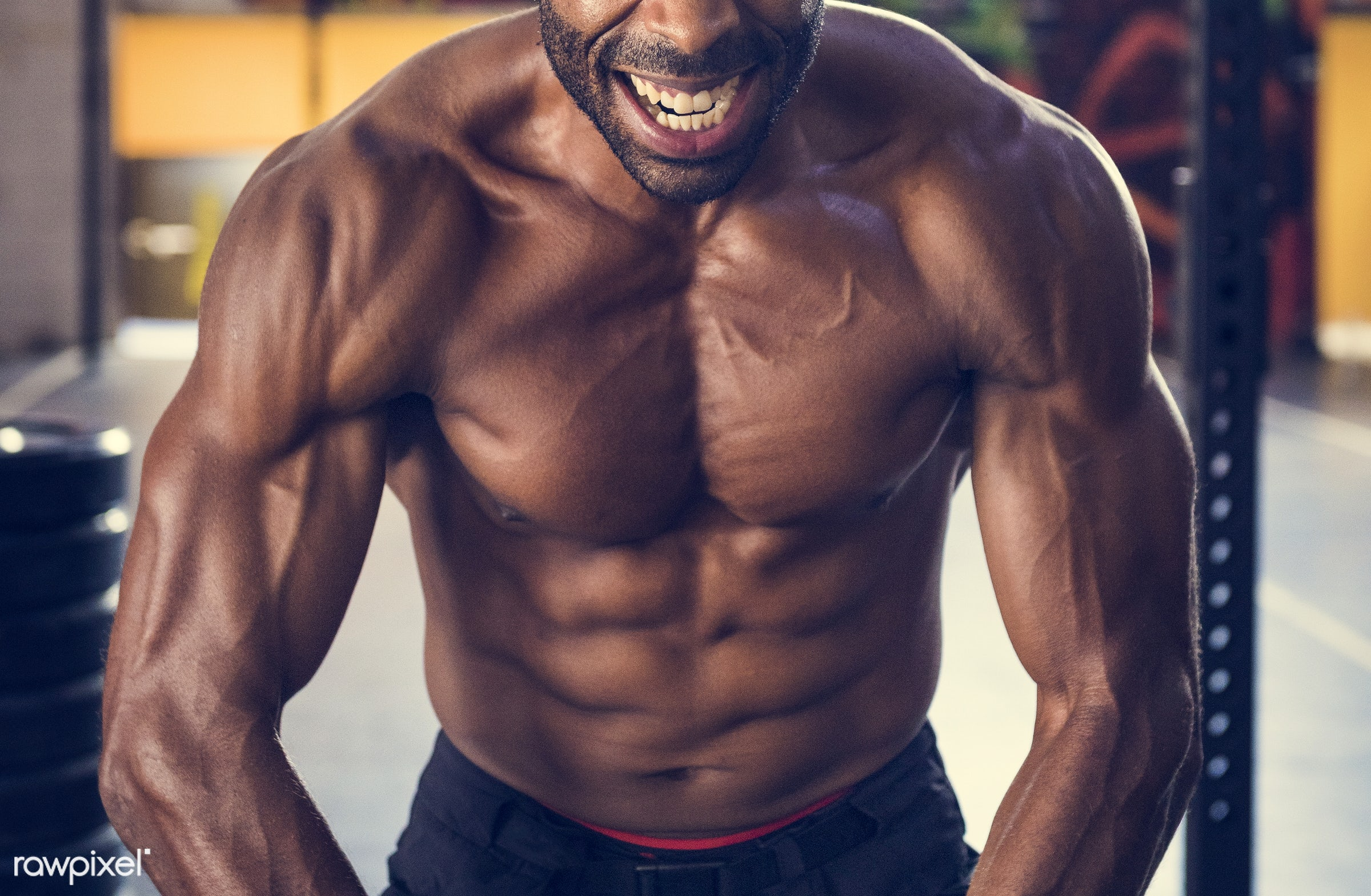 At the gym - achievement, active, activity, african descent, athlete, athletic, attractive, body, buff, fit, fitness, focus...