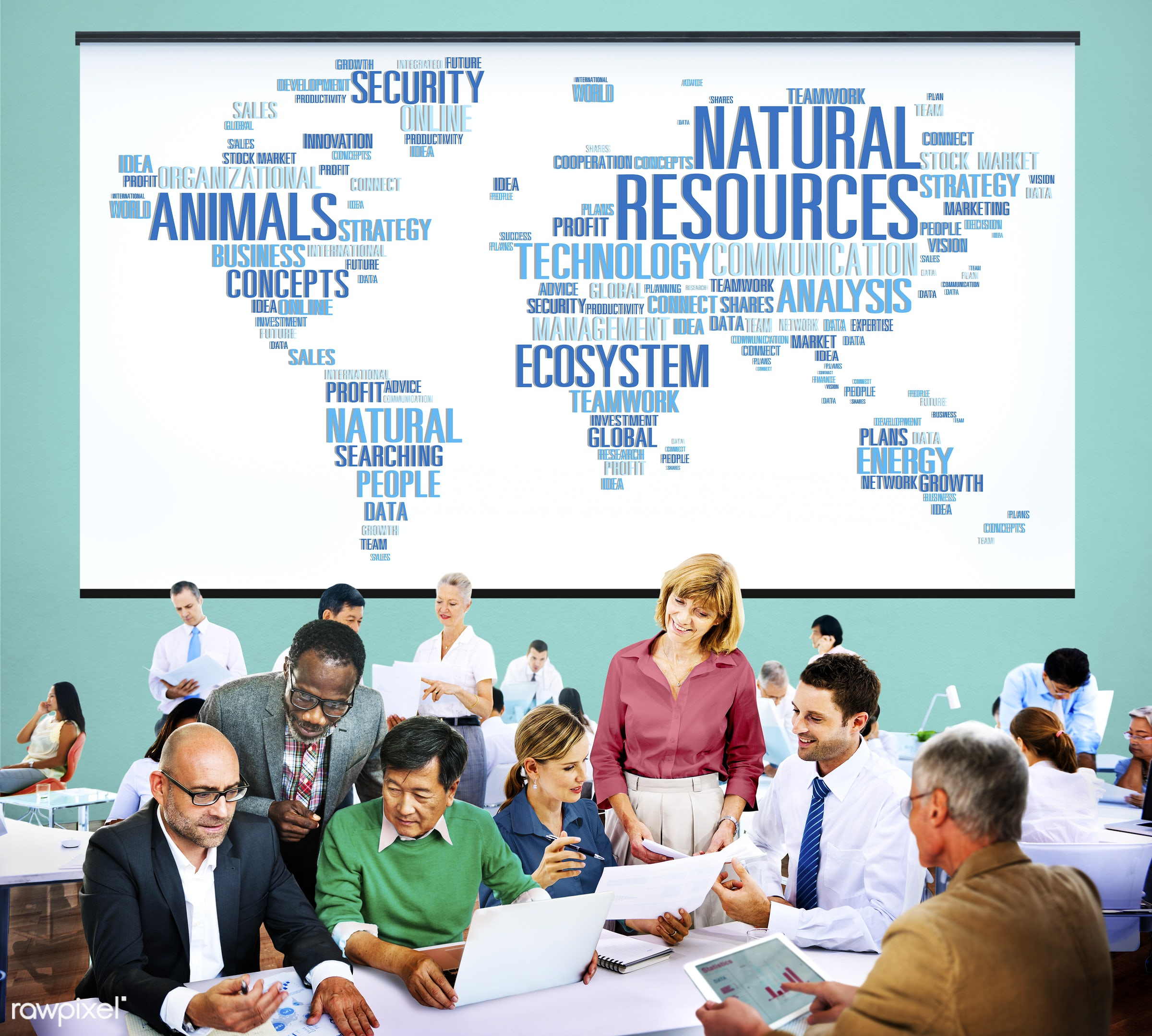 analysis, business, business people, businessmen, businesswomen, busy, cartography, communication, conservation, conserve,...