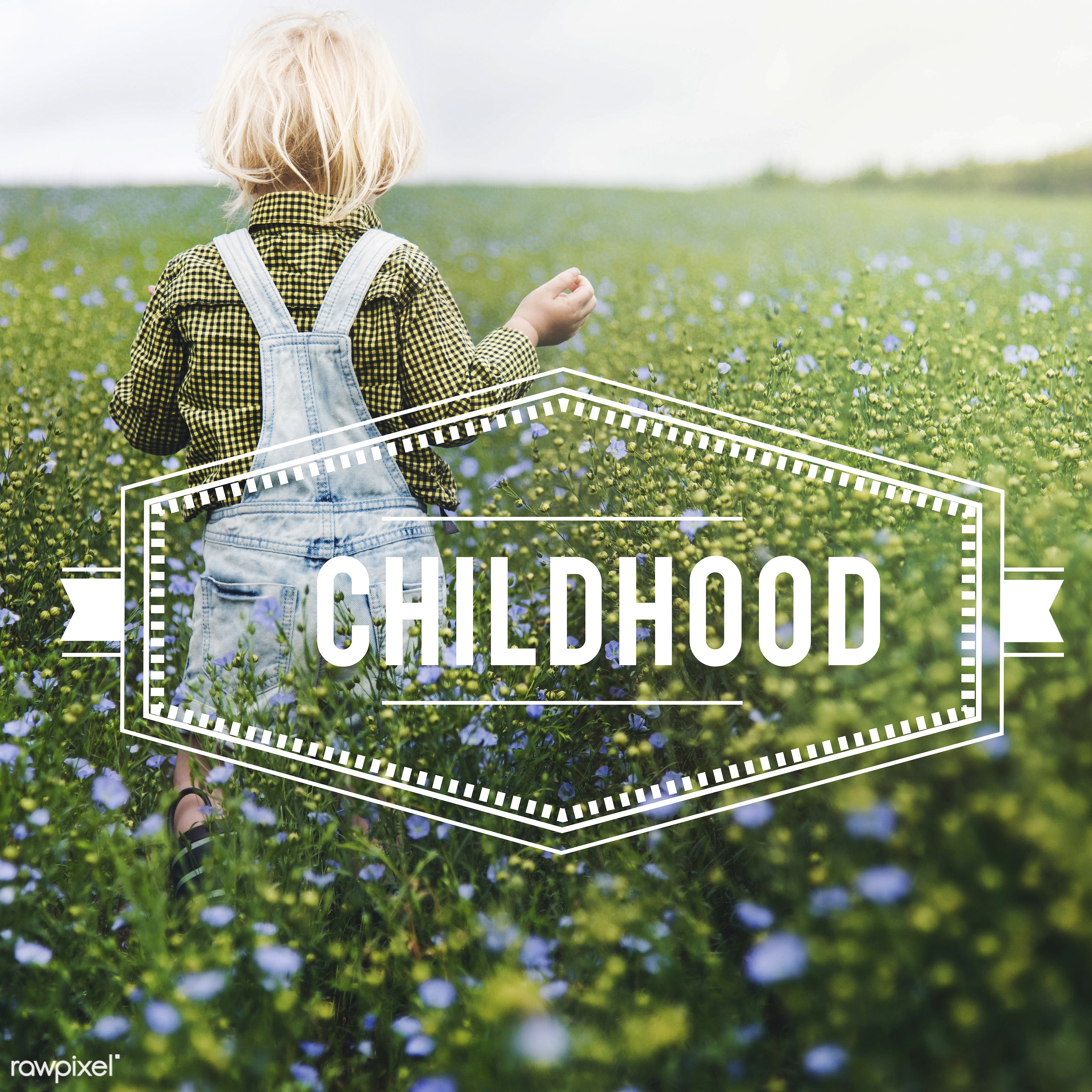 adorable, badge, banner, blonde, boy, caucasian, childhood, dungarees, enjoyment, environment, flower garden, flowers, fresh...