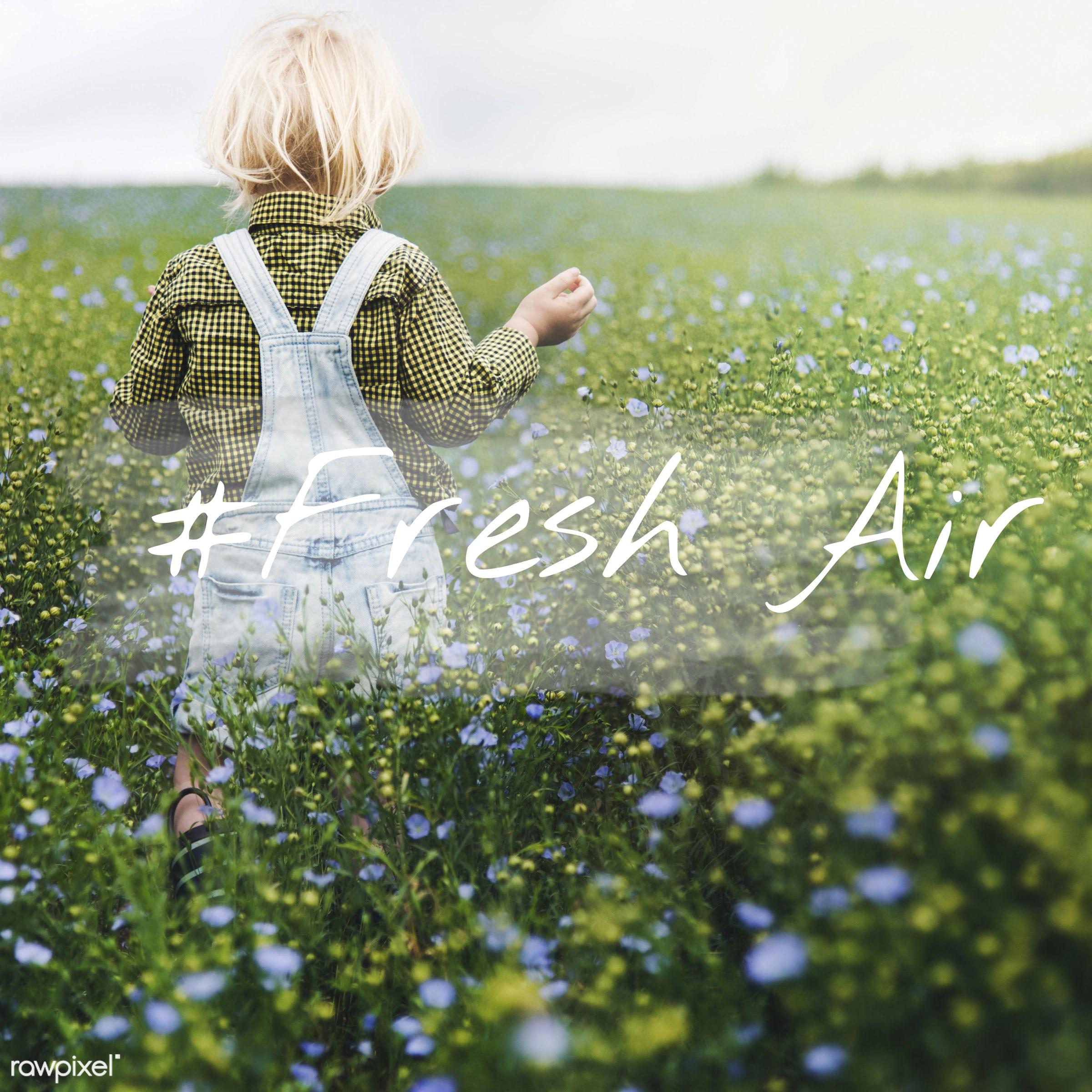 adorable, blonde, boy, caucasian, childhood, dungarees, enjoyment, environment, flower garden, flowers, fresh air, garden,...
