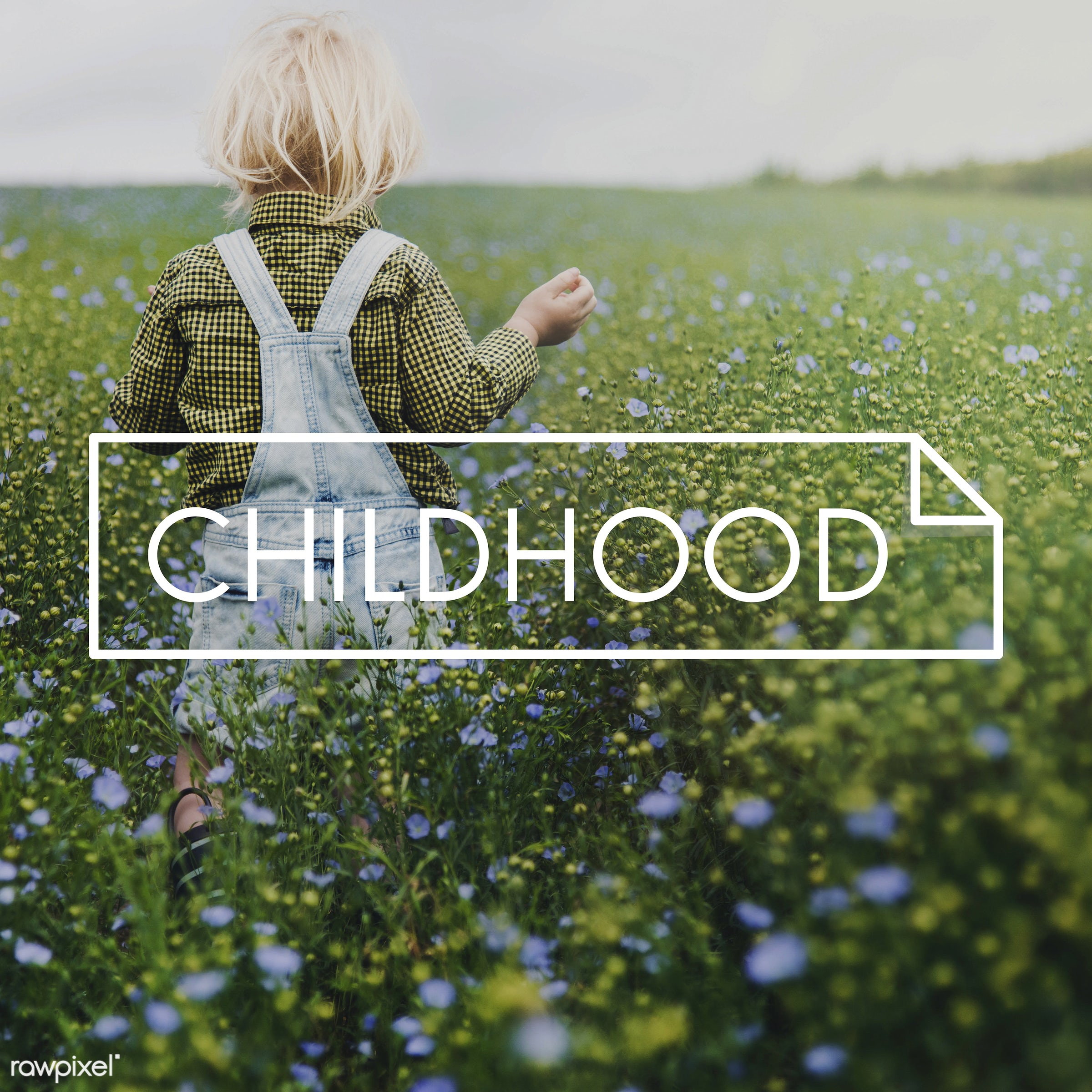 adorable, badge, banner, blonde, boy, caucasian, childhood, dungarees, enjoyment, environment, flower garden, flowers, fresh...