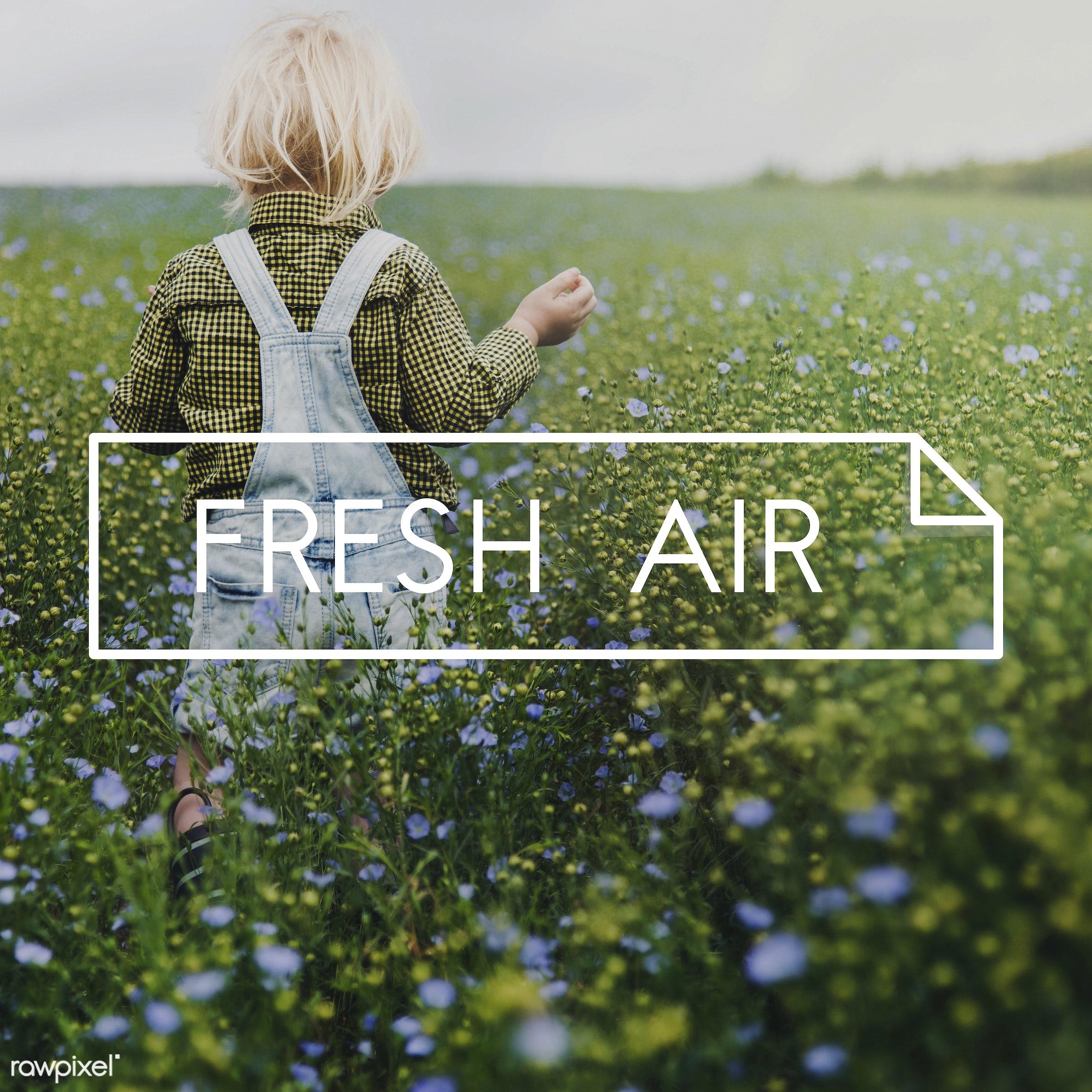 spring, adorable, badge, banner, blonde, boy, caucasian, childhood, dungarees, enjoyment, environment, flower garden,...