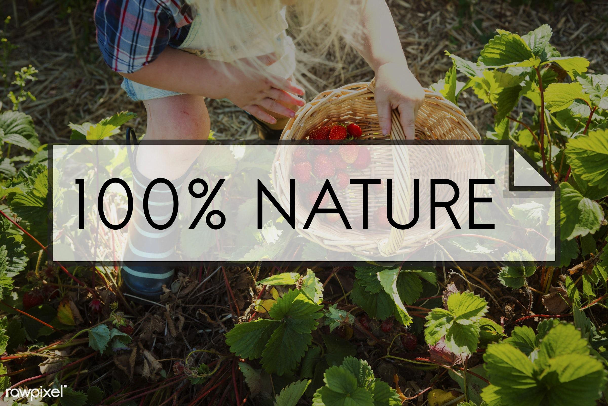 100% natural, 100% nature, basket, blonde, boy, caucasian, dungarees, eat fresh, farm, freshly picked, freshness, fruit, fun...