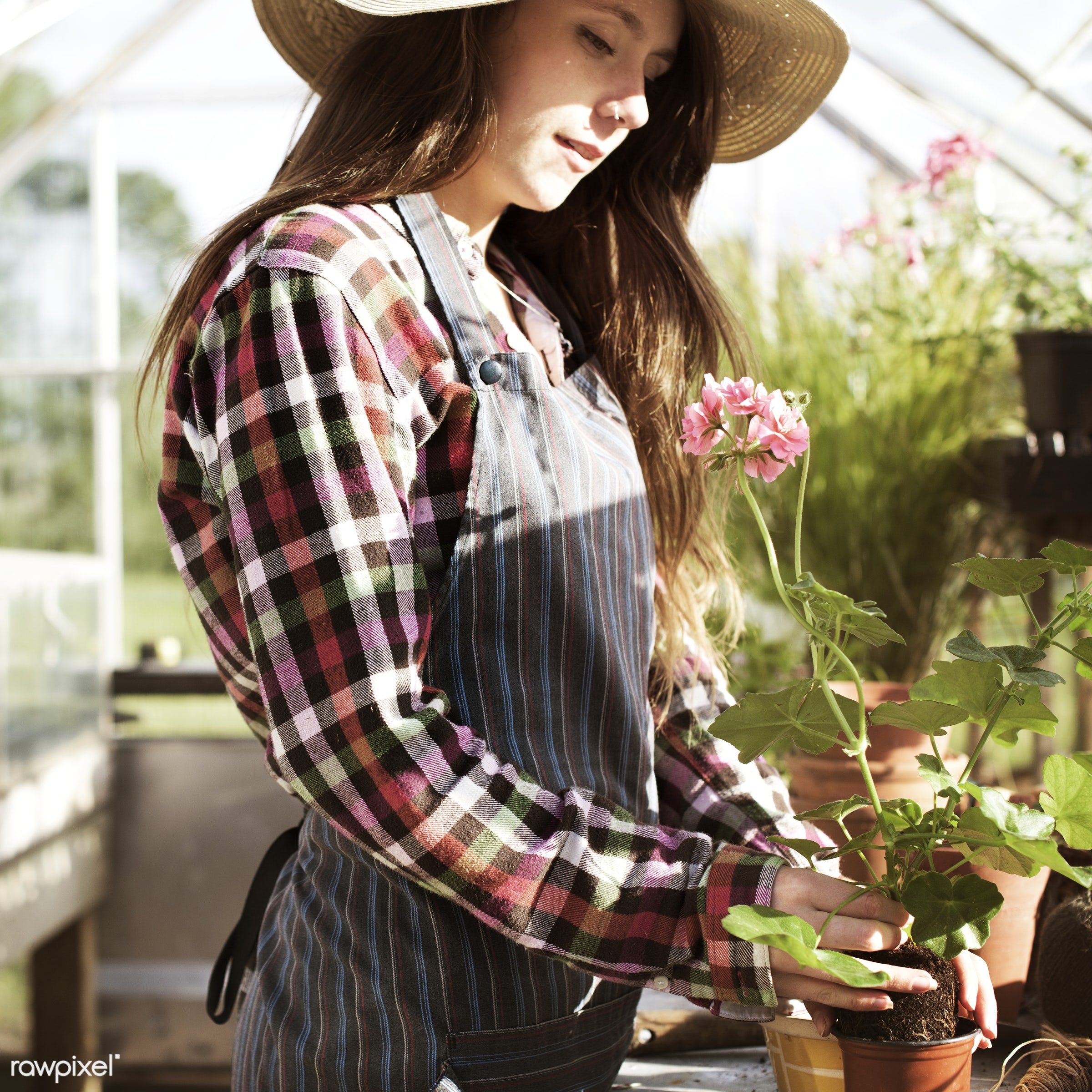 Young woman in the glass greenhouse - agriculture, backyard, bloom, botanical, botany, building, cares, caucasian,...
