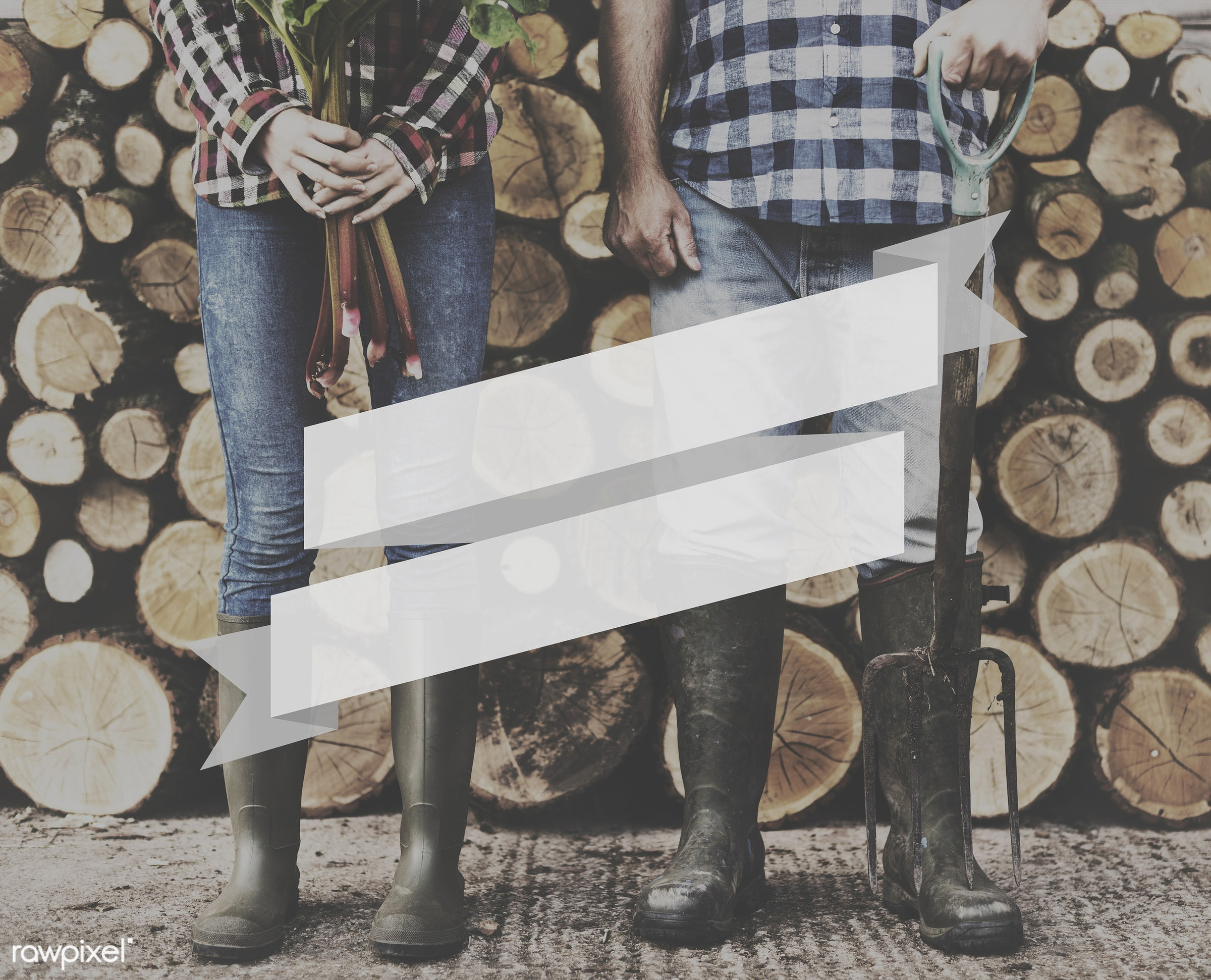 farm, award, badge, banner, blank, caucasian, certificate, copy space, farmer, firewood, graphic, hands, holding, jeans,...