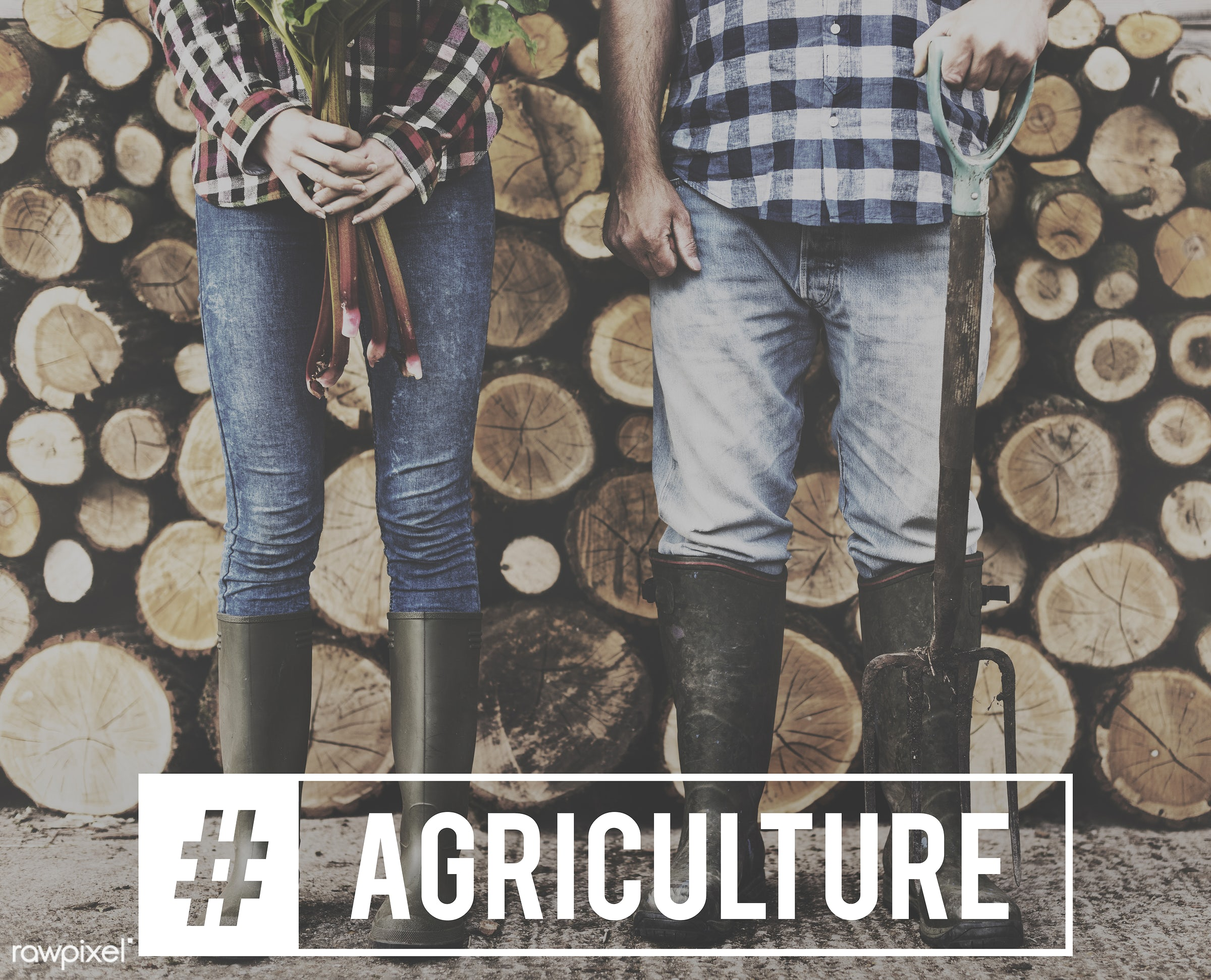 agriculture, aim high, be the change, caucasian, country, crops, cultivation, farm, farmer, farming, firewood, food, hands,...