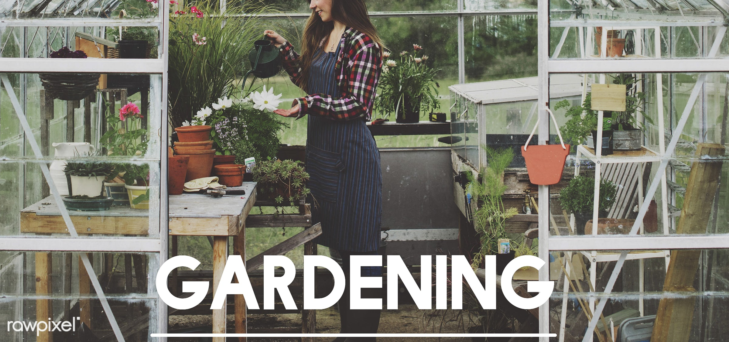 garden, apron, caucasian, dark blonde, female, flowerpot, flowers, gardener, gardening, glasshouse, grass, green, hands,...