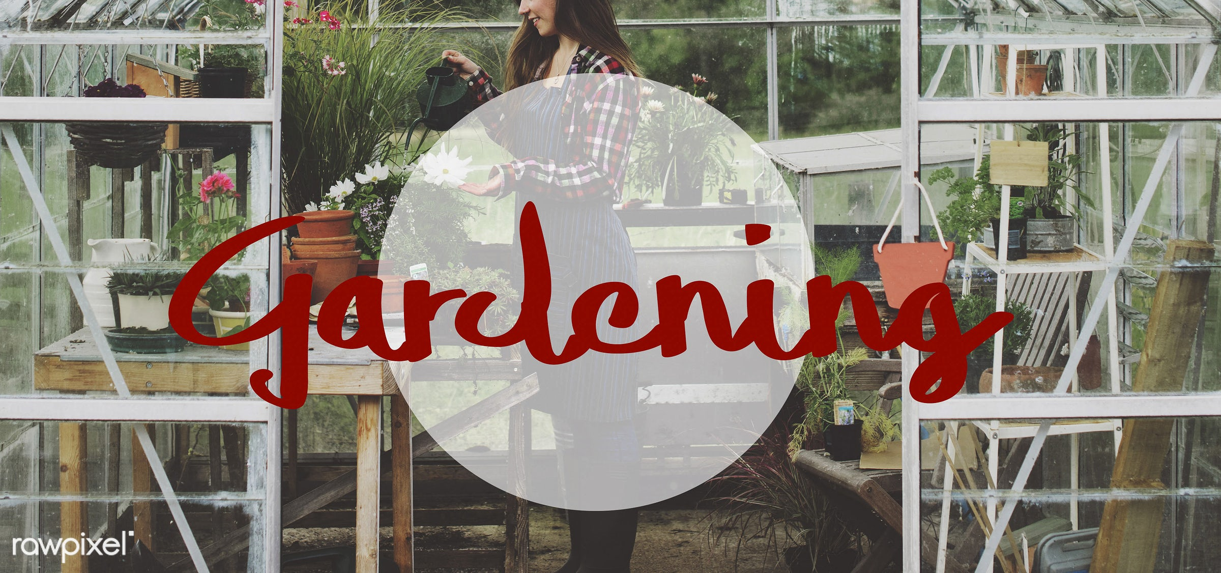 apron, caucasian, dark blonde, female, flowerpot, flowers, garden, gardener, gardening, glasshouse, grass, green, hands,...