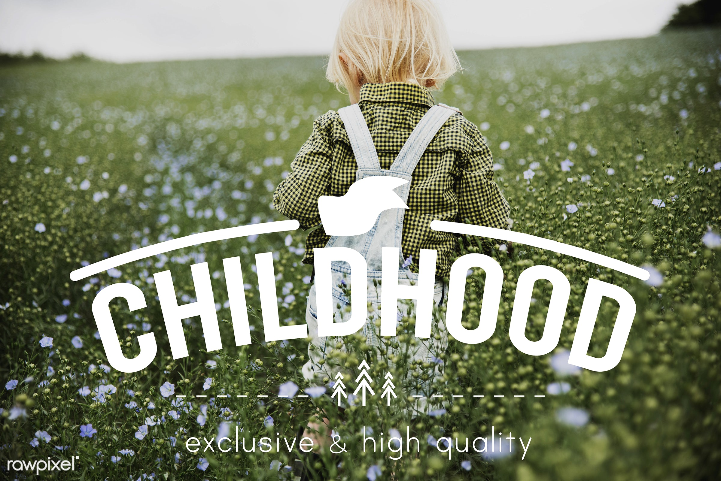 Little boy in a flower field - walking, childhood, natural, spring, adolescence, blonde, boy, child, children, dungarees,...