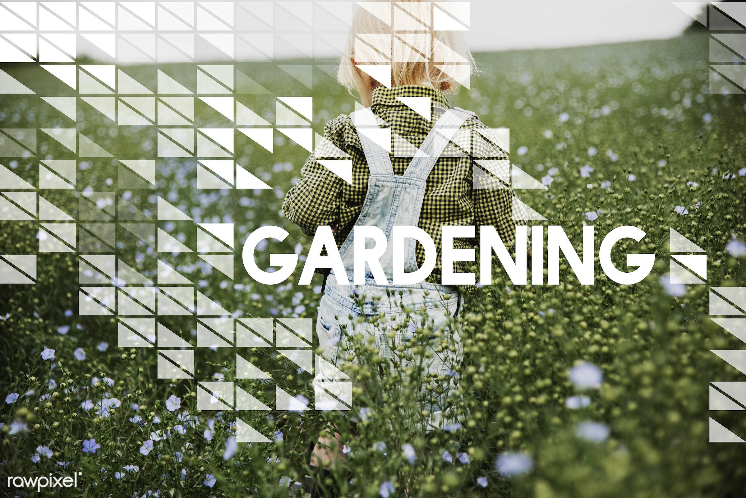 blonde, boy, caucasian, dungarees, flower garden, flowers, garden, jeans, little, little boy, natural, nature, outdoors,...