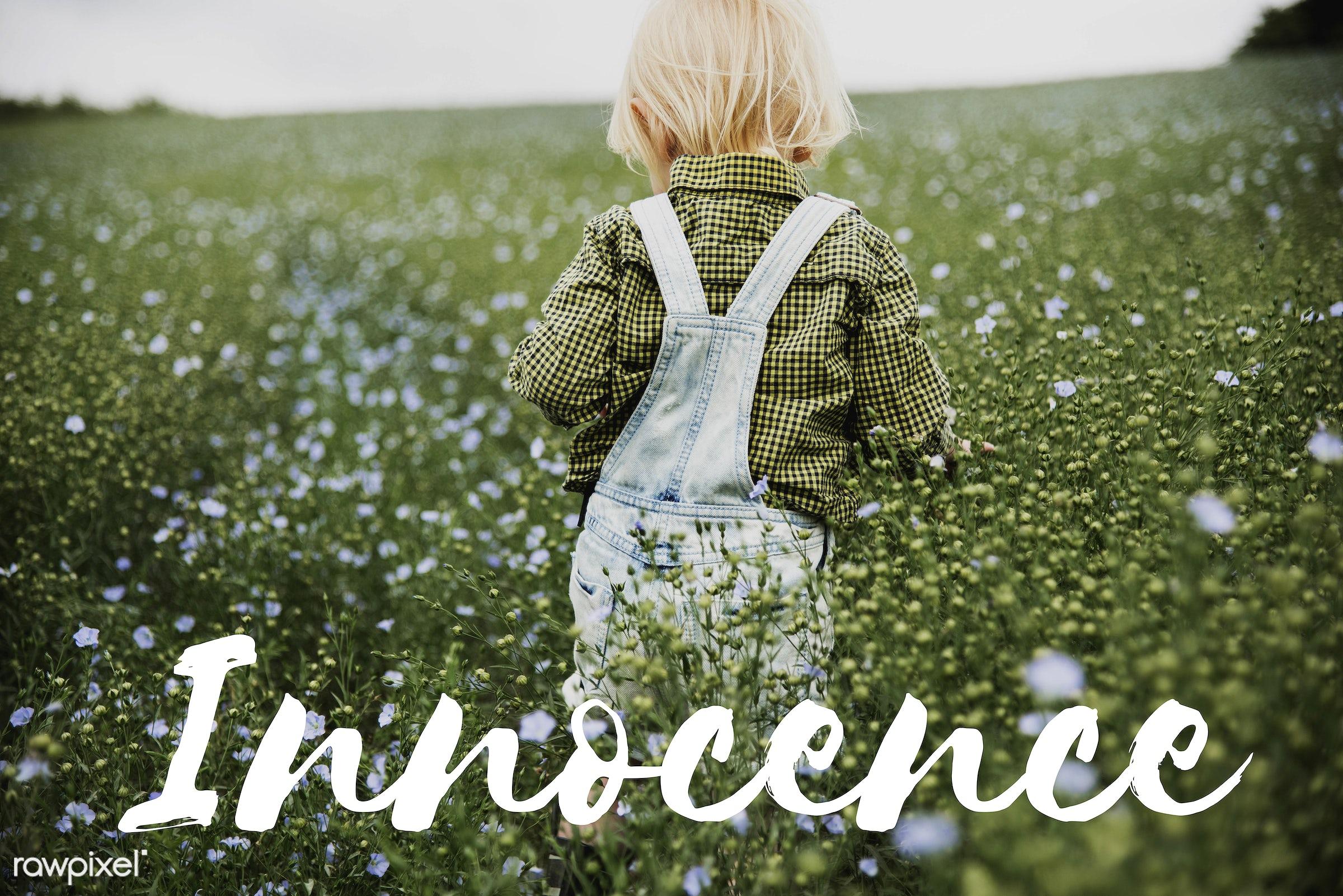 baby, child, adorable, blameless, blonde, boy, caucasian, childhood, children, curiosity, curious, cute, dungarees, flower...
