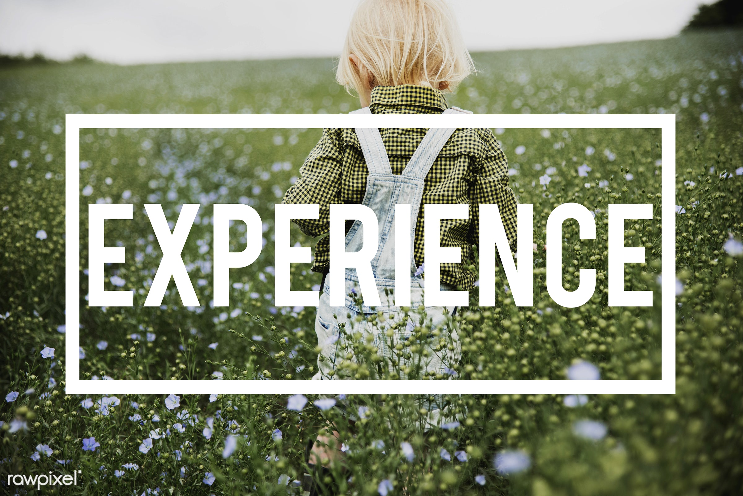 aware, awareness, blonde, boy, caucasian, contact with, do, doing, dungarees, encounter, existence, experience, expertise,...