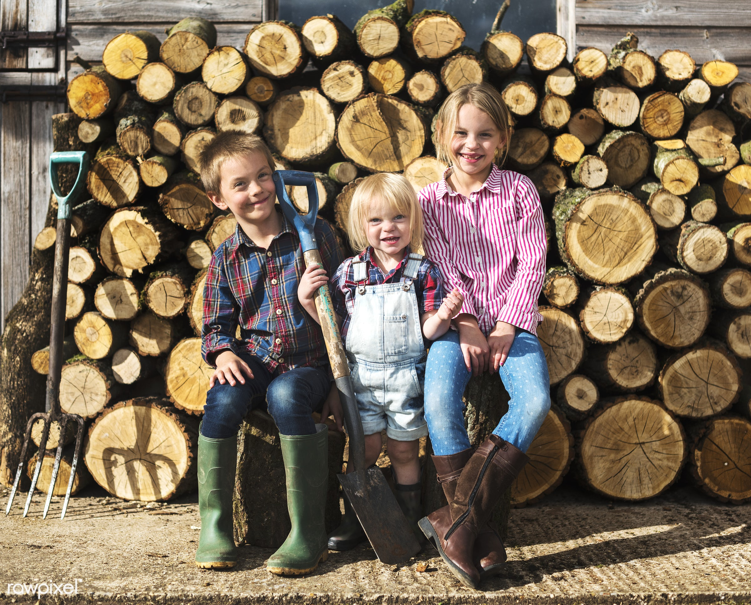 young farmers family - brother, cheerful, child, children, chopped, countryside, cut, family, farmer, firewood, gardener,...