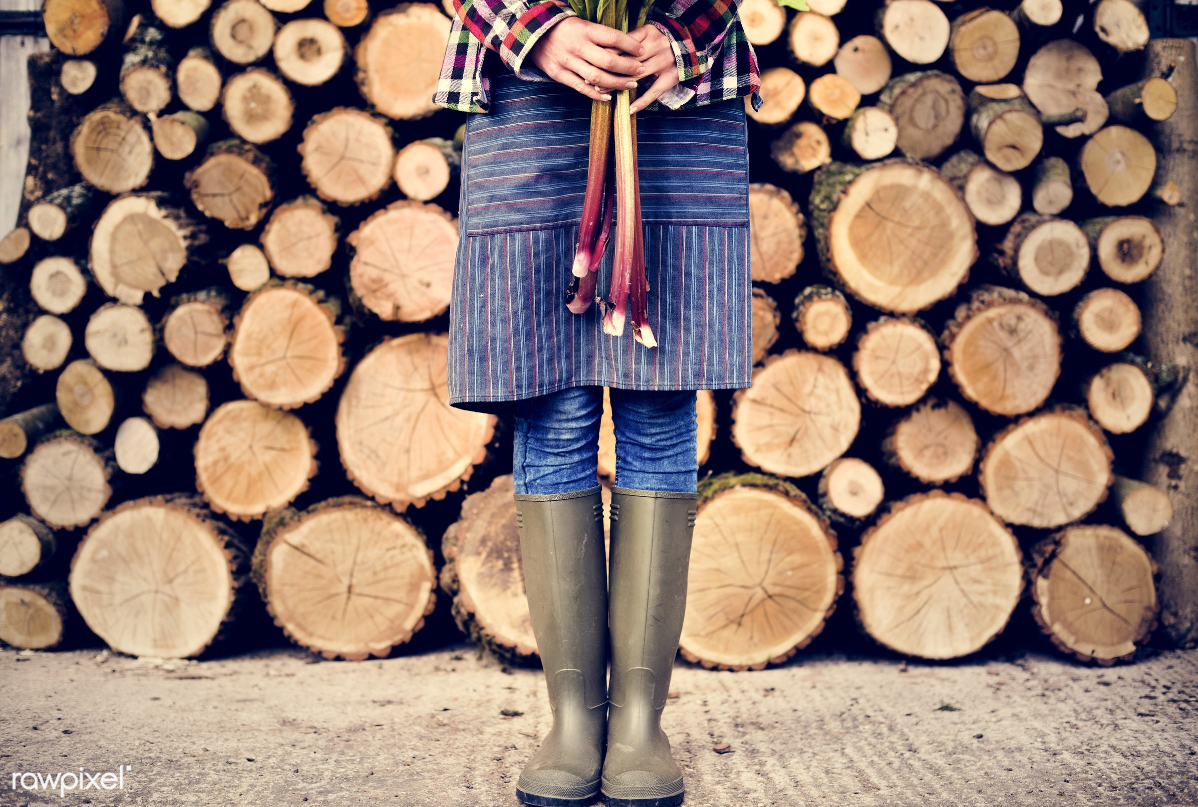 chopped, countryside, cut, farmer, firewood, fresh, gardener, log, lumber, nature, organic, people, pile, resource, stack,...