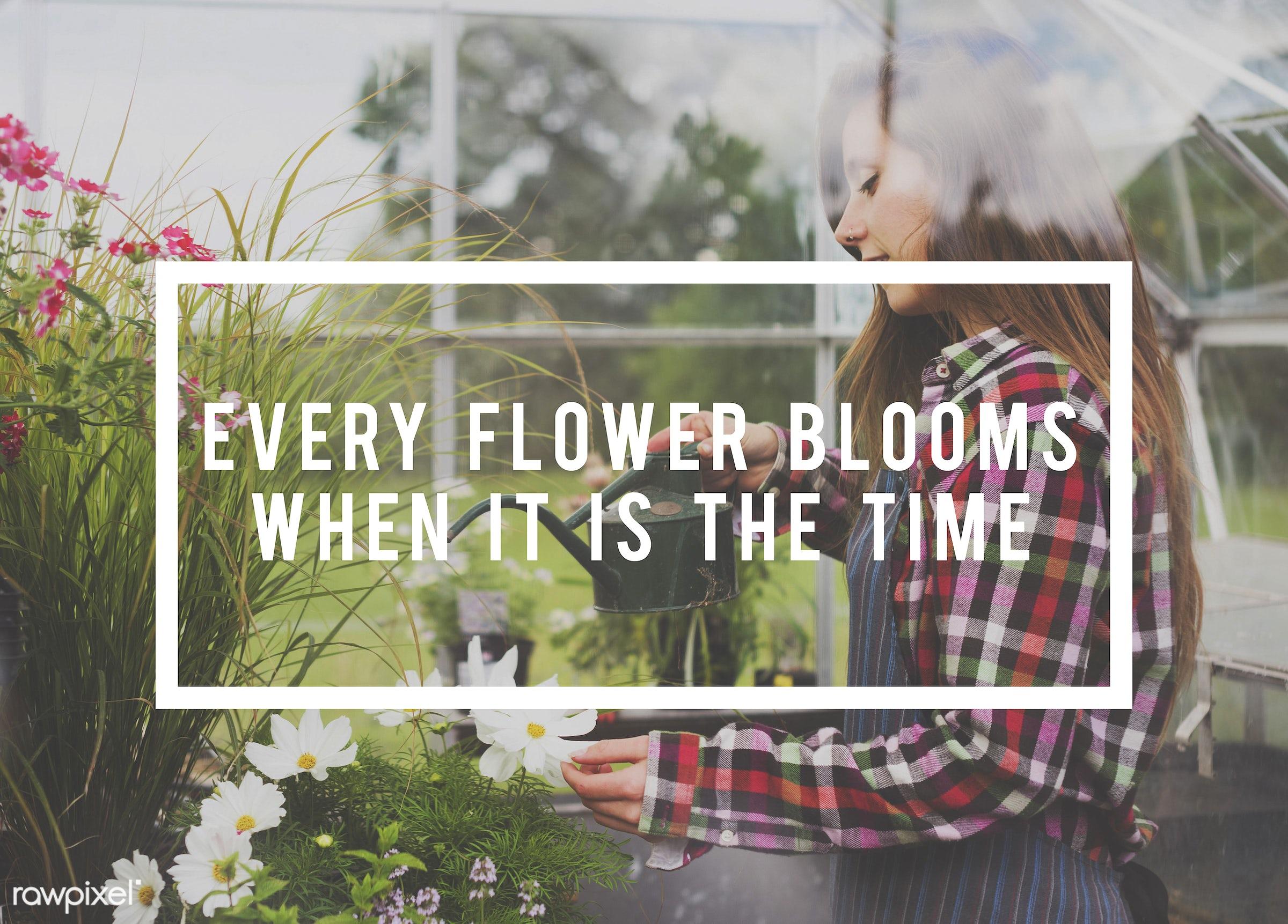 apron, caucasian, dark blonde, female, flowers, garden, gardener, gardening, glasshouse, grass, green, outdoors, plants,...