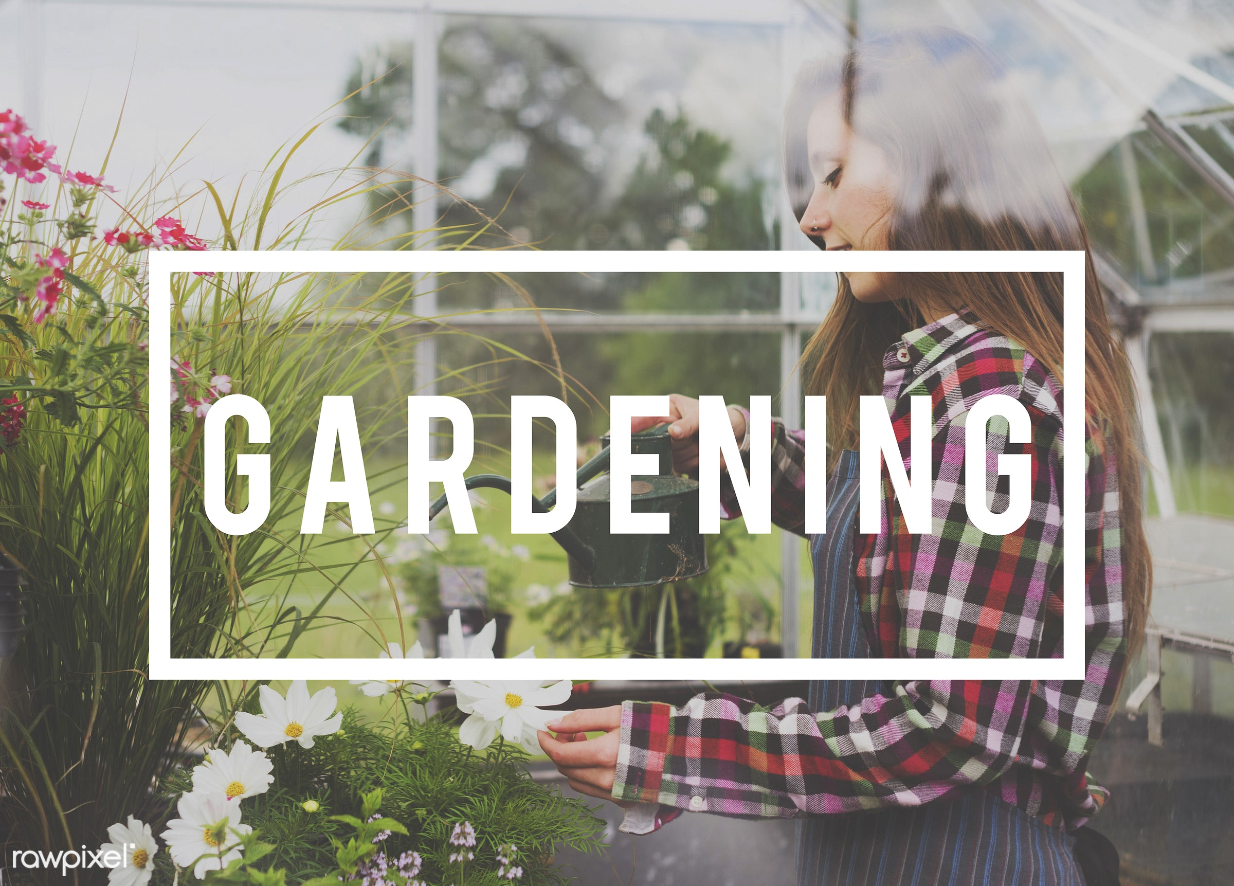 apron, caucasian, dark blonde, female, flowers, garden, gardener, gardening, glasshouse, grass, green, outdoors, plants,...