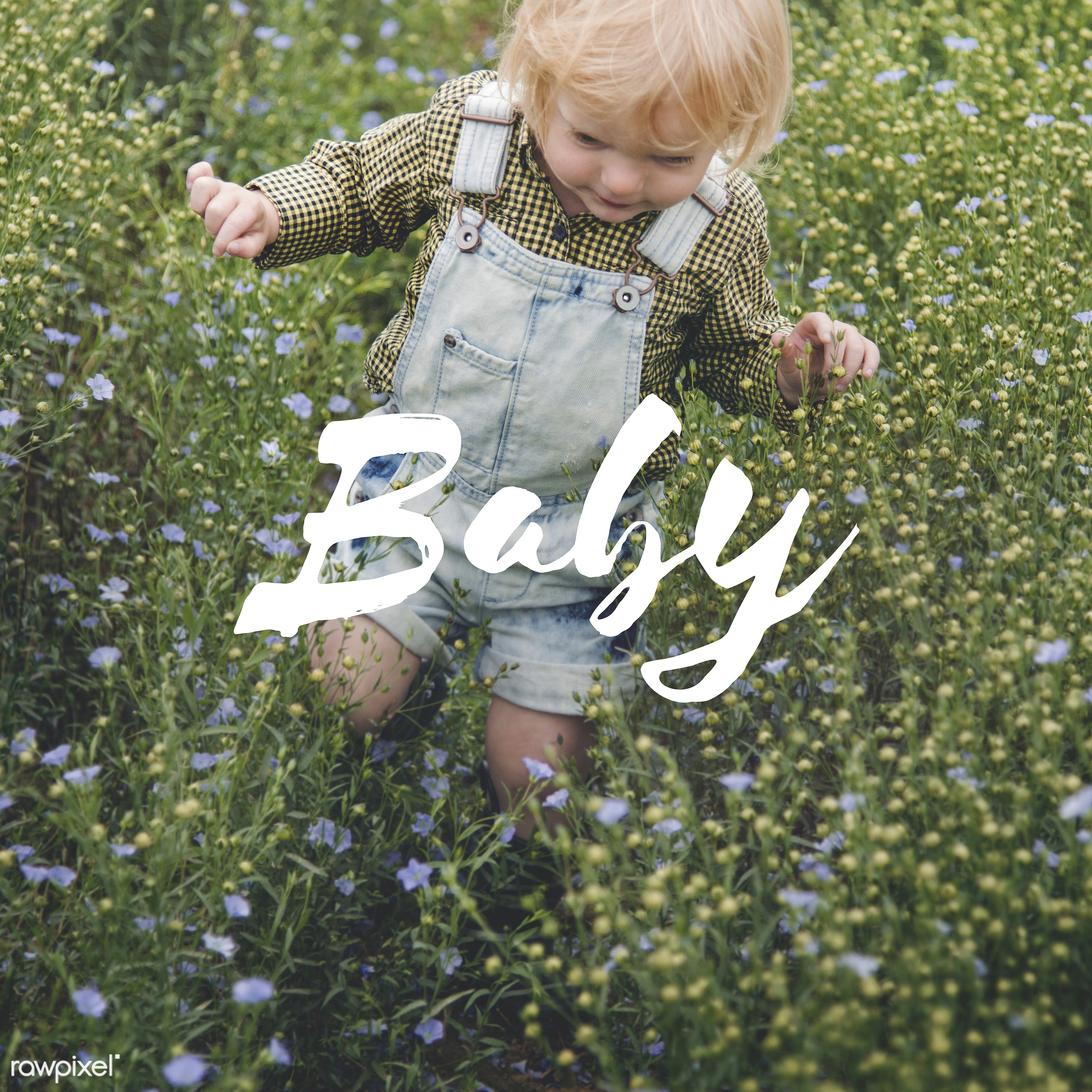 baby, adorable, blameless, blonde, boy, caucasian, child, childhood, children, curiosity, curious, cute, dungarees, flower...