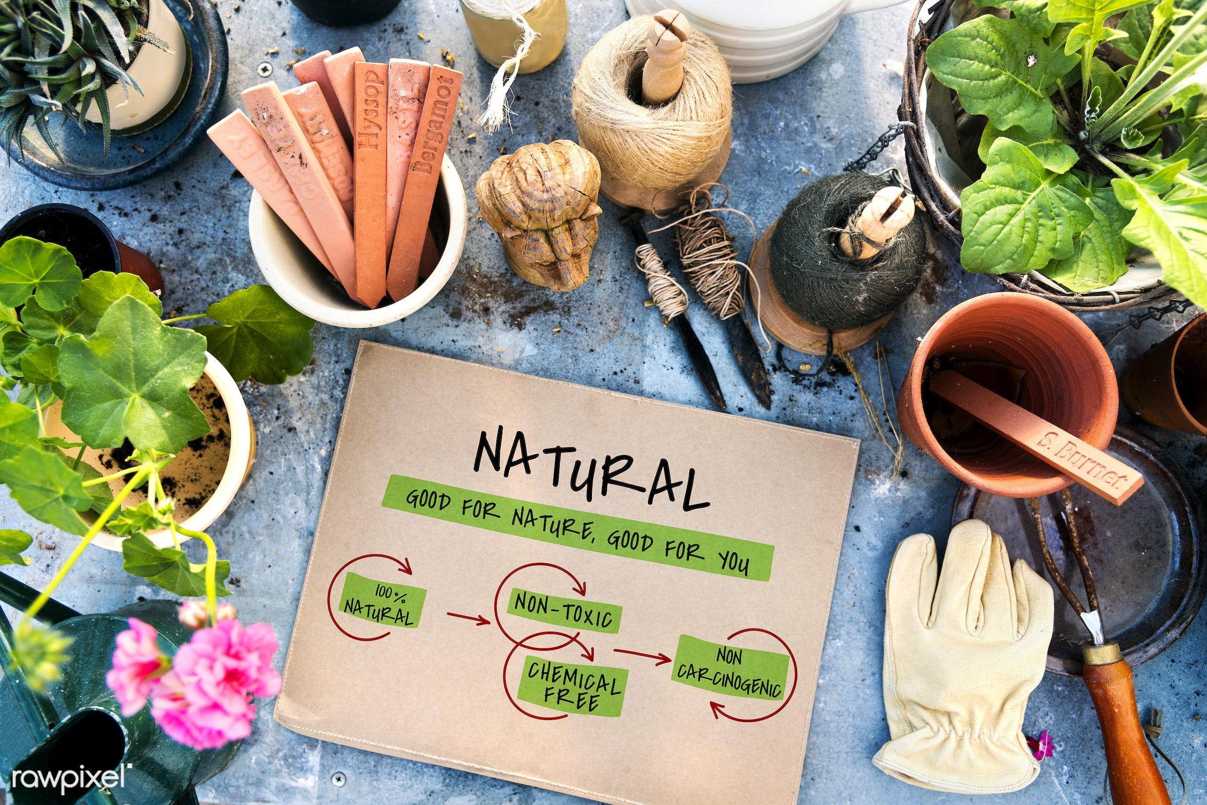 bio, chemical free, eco, ecology, farm, flowerpot, flowers, food, fresh, garden, gardening, glove, graphic, health,...