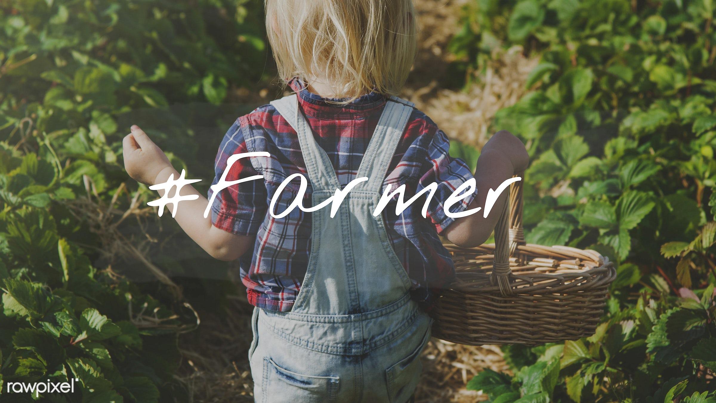 basket, blonde, boy, caucasian, dungarees, eco, ecology, environment, environmental, farm, farmer, farming, fruit, fun,...