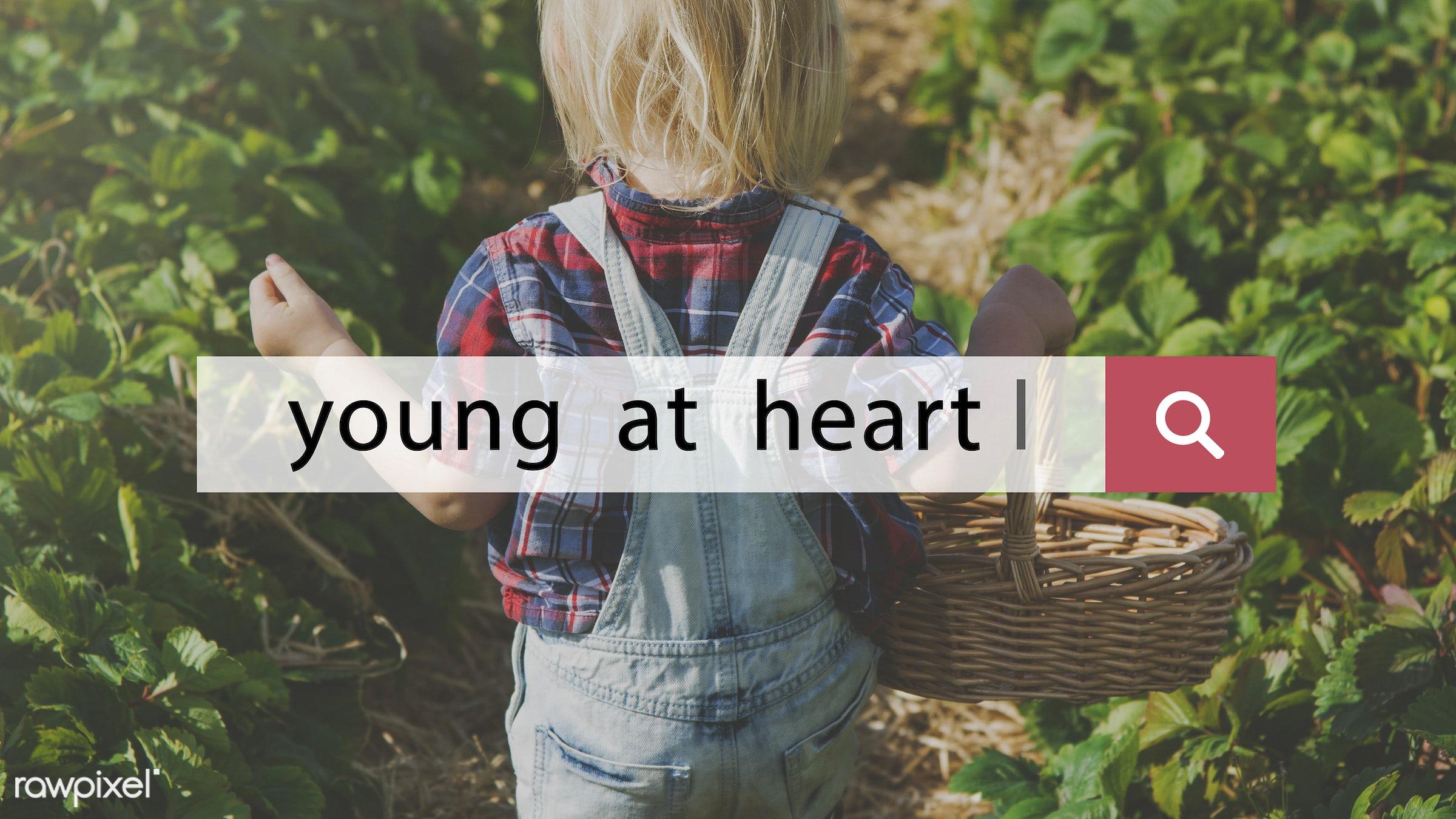 appreciate, basket, blonde, boy, caucasian, childhood, delightful, dungarees, enjoy, enjoy life, enjoyment, farm, fruit, fun...