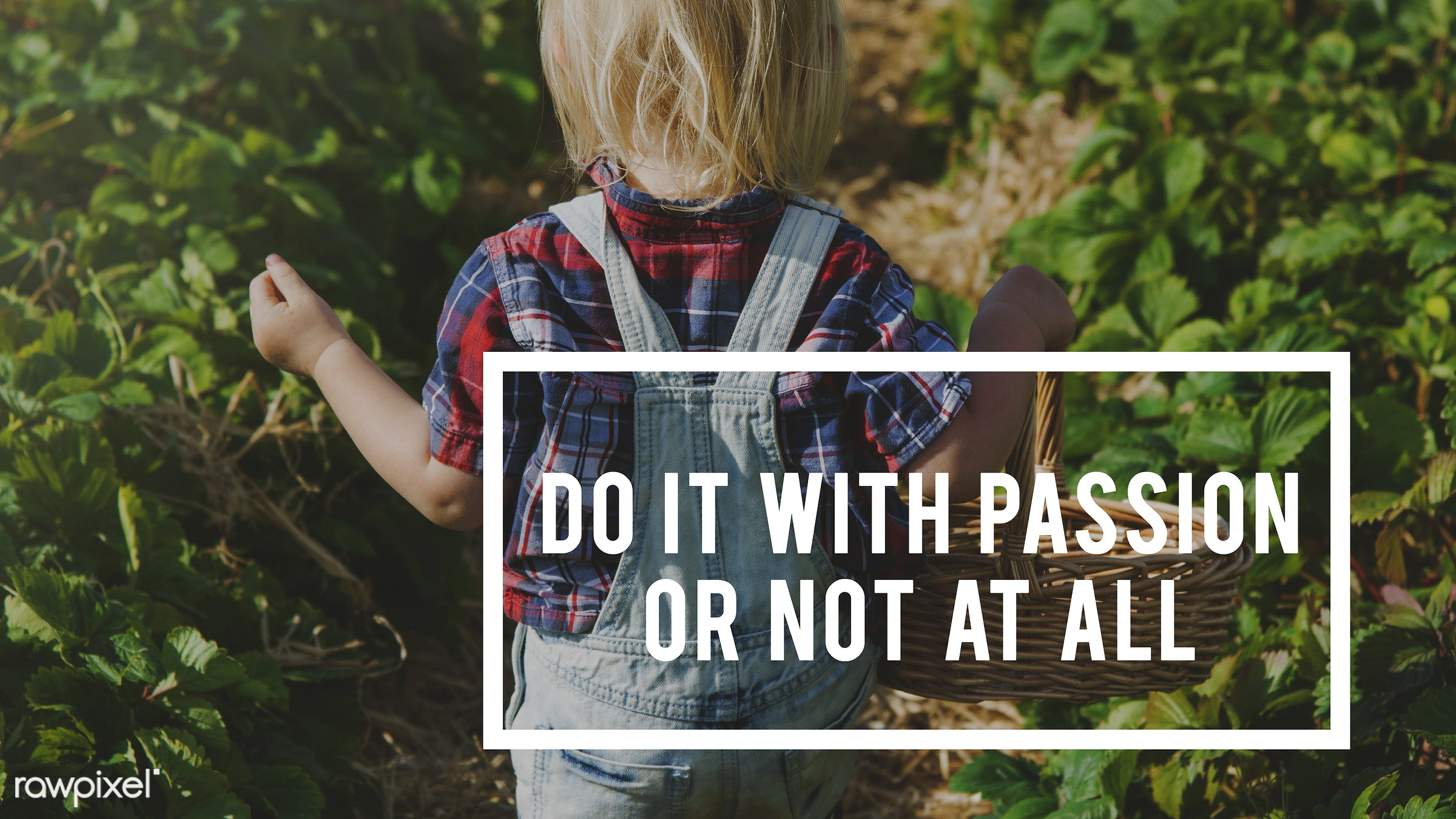 action, attitude, basket, blonde, boy, caucasian, change, dare, do it, dungarees, farm, freedom, fruit, fun, good, graphic,...