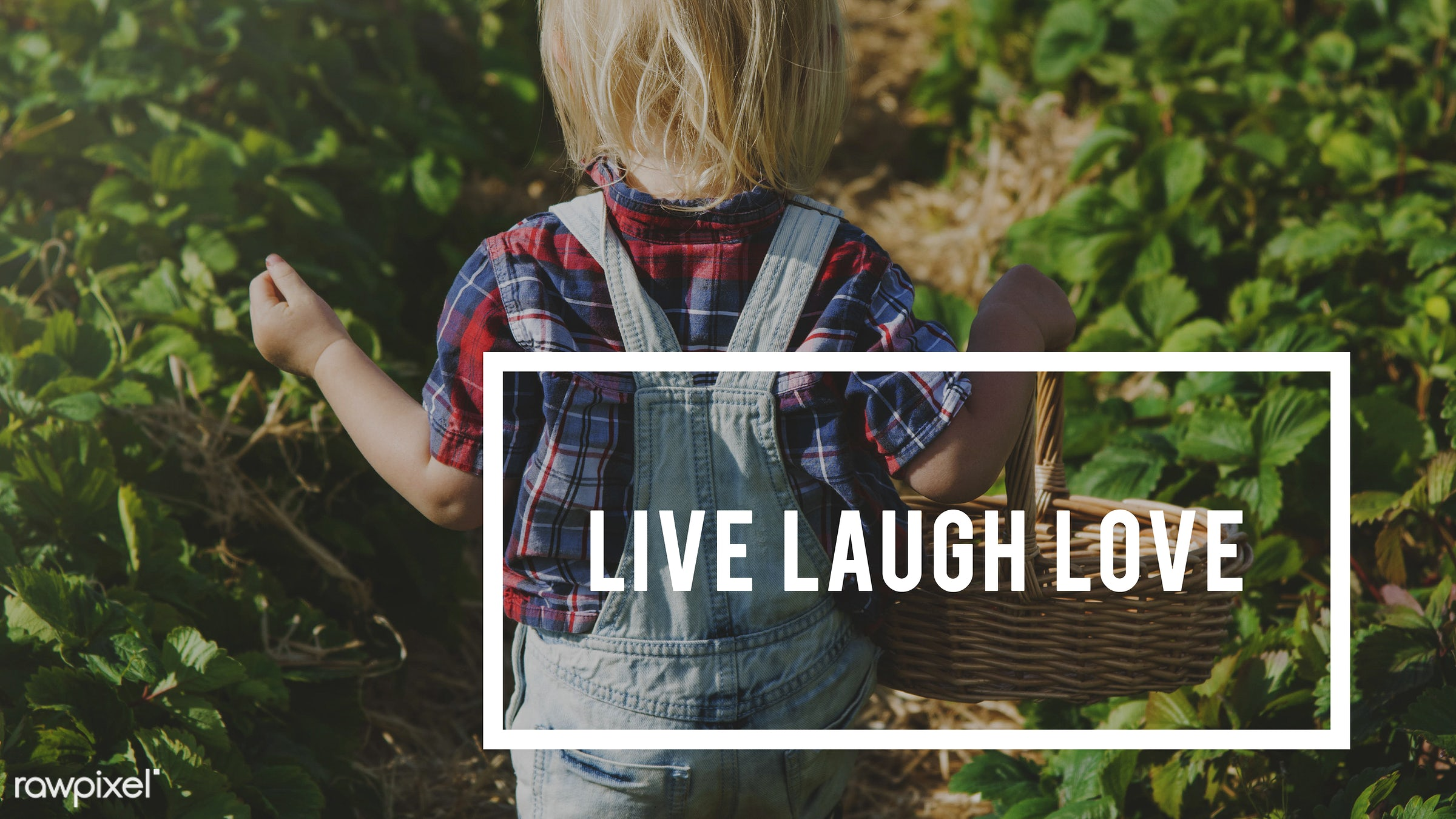 action, attitude, basket, blonde, boy, caucasian, change, dare, don't be afraid to be great, dungarees, farm, freedom, fruit...