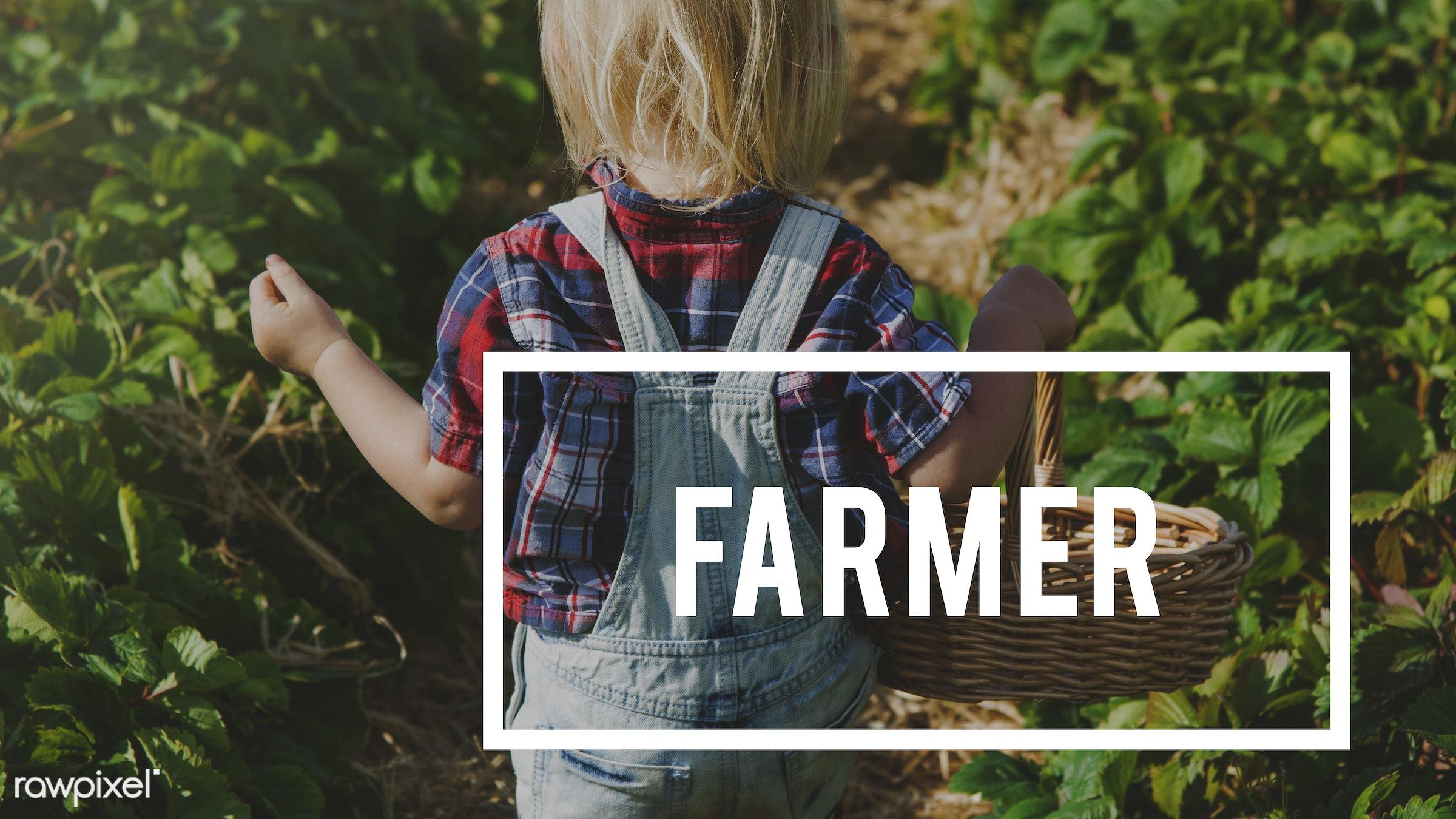 planting, basket, blonde, boy, caucasian, dungarees, eco, ecology, environment, environmental, farm, farmer, farming, fruit...