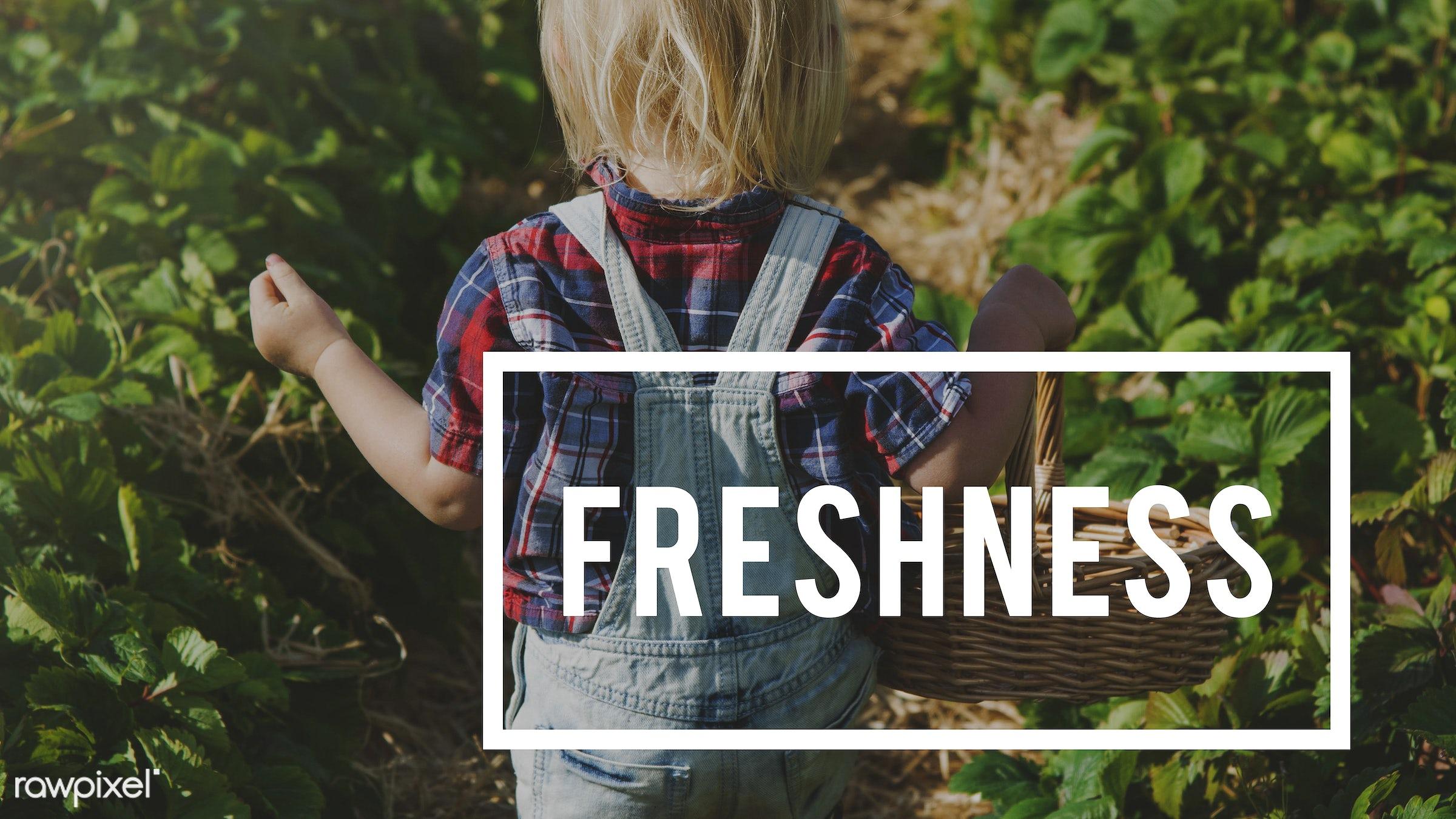 basket, blonde, boy, caucasian, dungarees, eco, ecology, environment, environmental, farm, fresh, freshness, fruit, fun,...