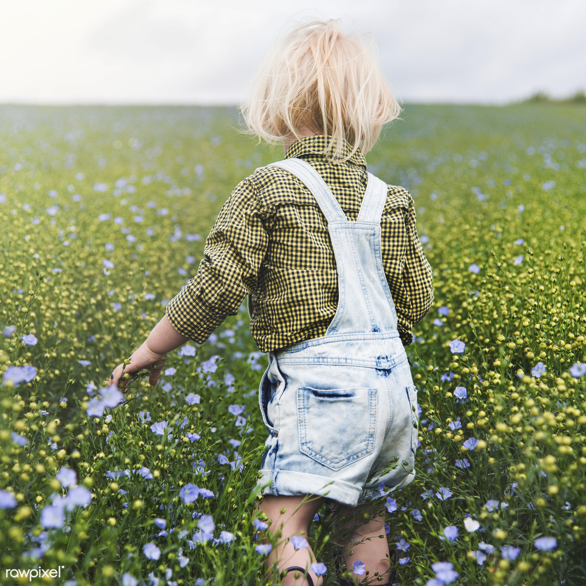 Kid in the garden - alone, backyard, bloom, blooming, blue, botanical, botany, boy, cheerful, child, children, countryside,...