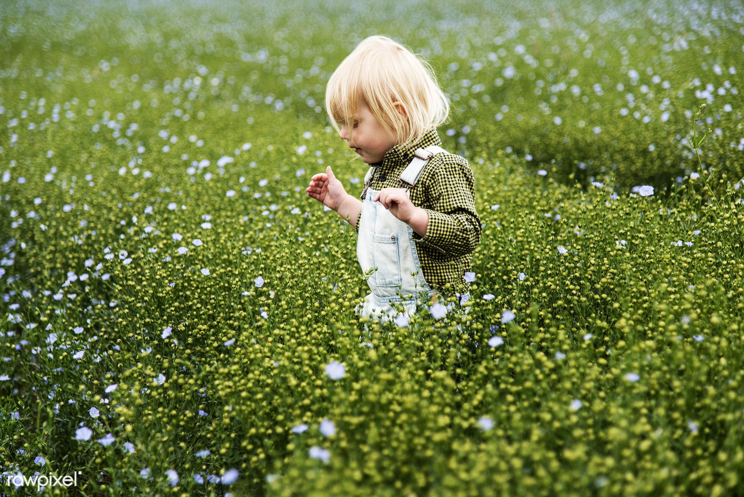 Kid in flower field - alone, backyard, bloom, blooming, blue, botanical, botany, boy, cheerful, child, children, countryside...